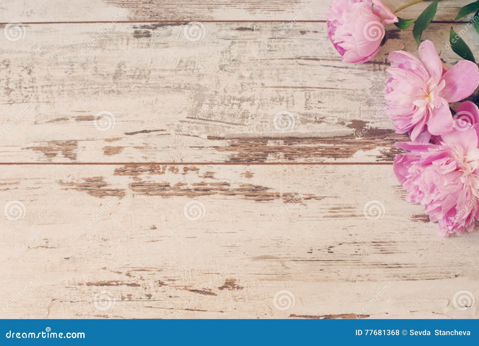 Erstaunliche rosa Pfingstrosen auf rustikalem hölzernem Hintergrund des weißen Lichtes Kopieren Sie Raum, Blumenrahmen Weinlese,