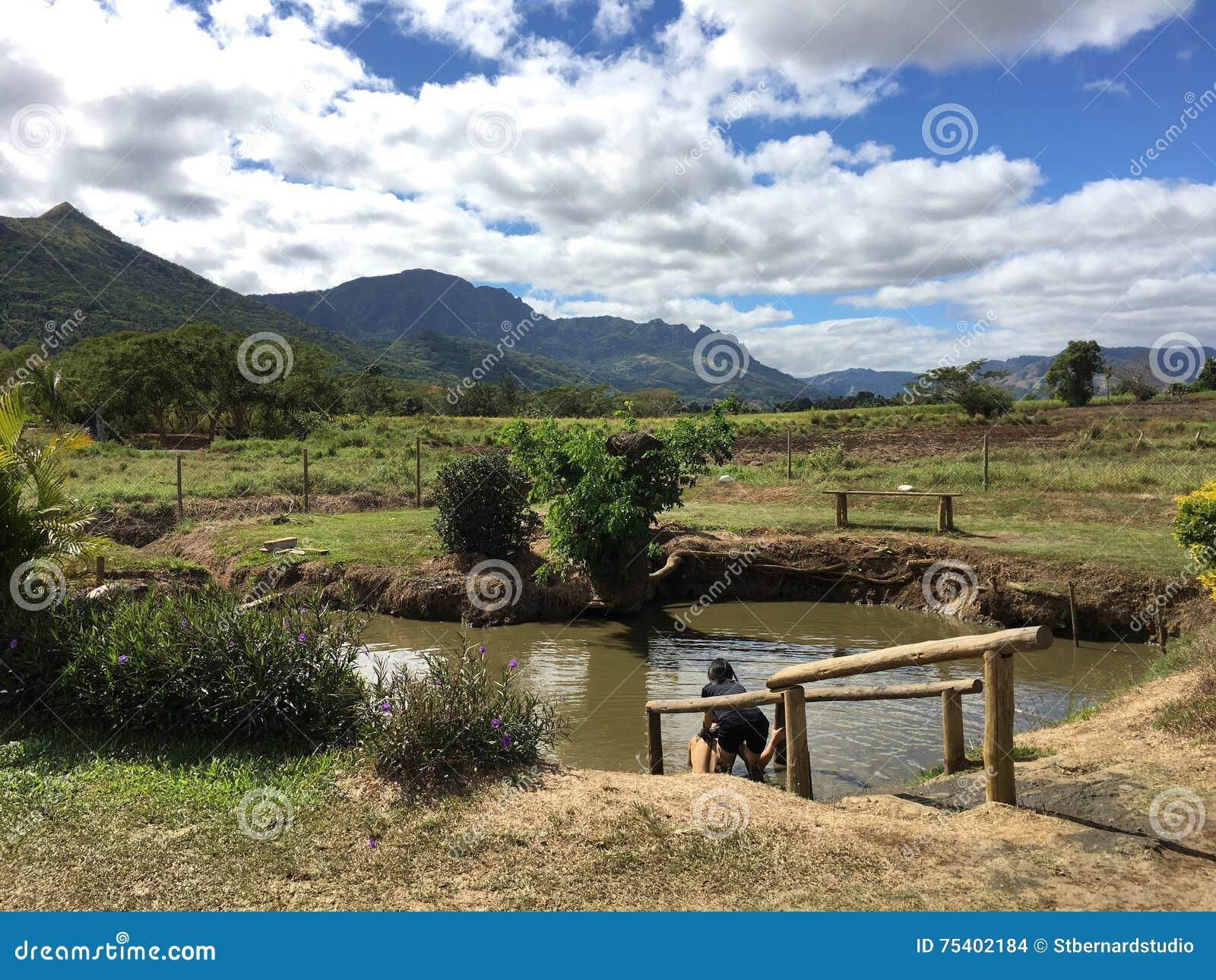 Erster Muddy Pool im Sabeto-Schlamm-Pool um Nadi, Fidschi