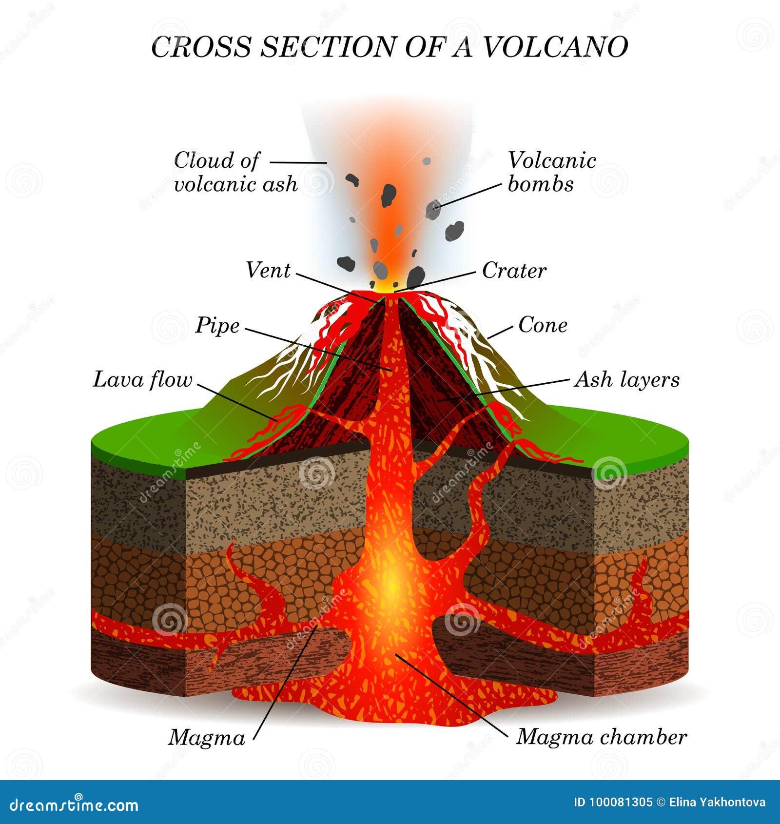 Eruzione ignea del vulcano nella sezione trasversale Schema scientifico di istruzione