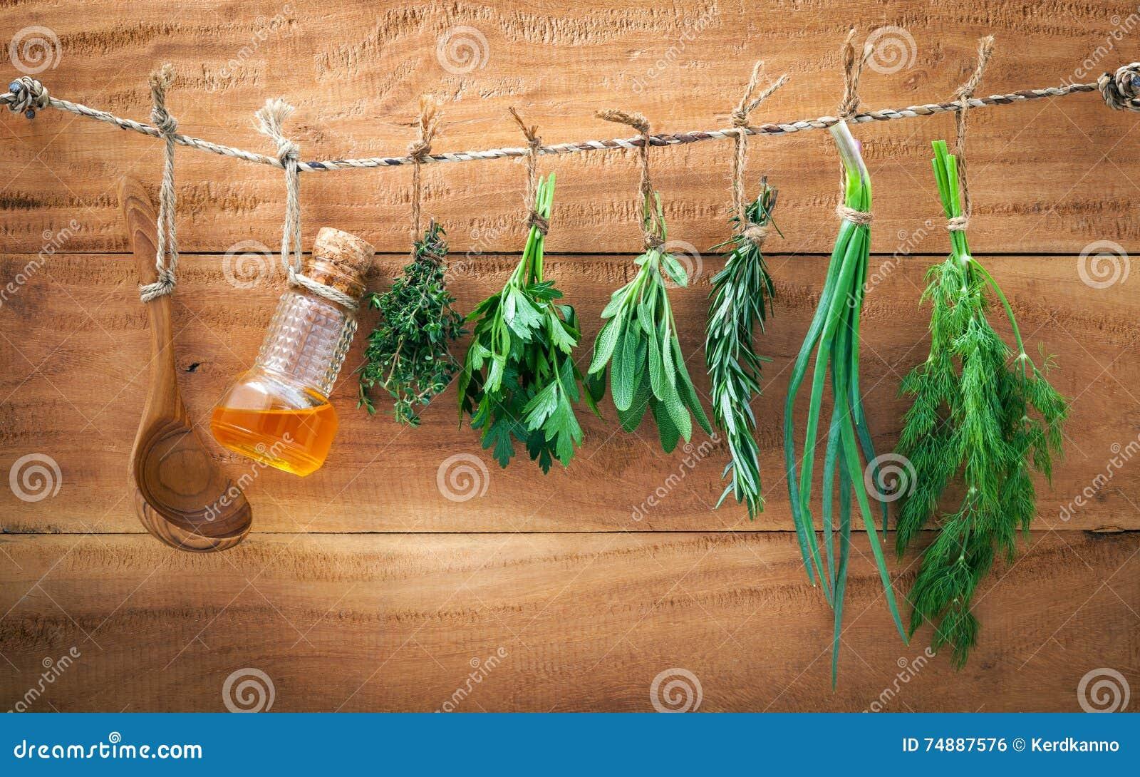 A erva sortido empacota a salsa de suspensão, sábio, alecrim, aneto, sprin