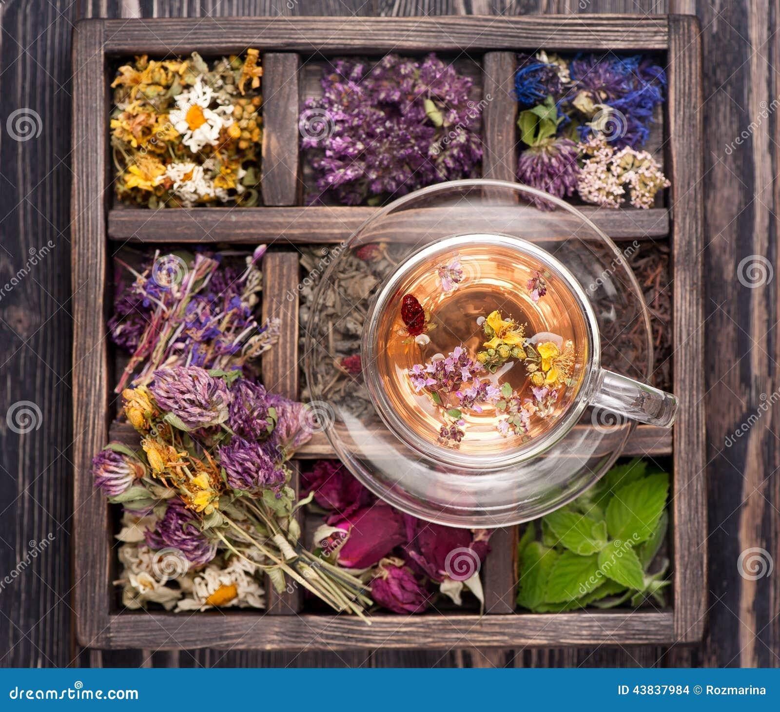 Ervas e flores e tisana secadas