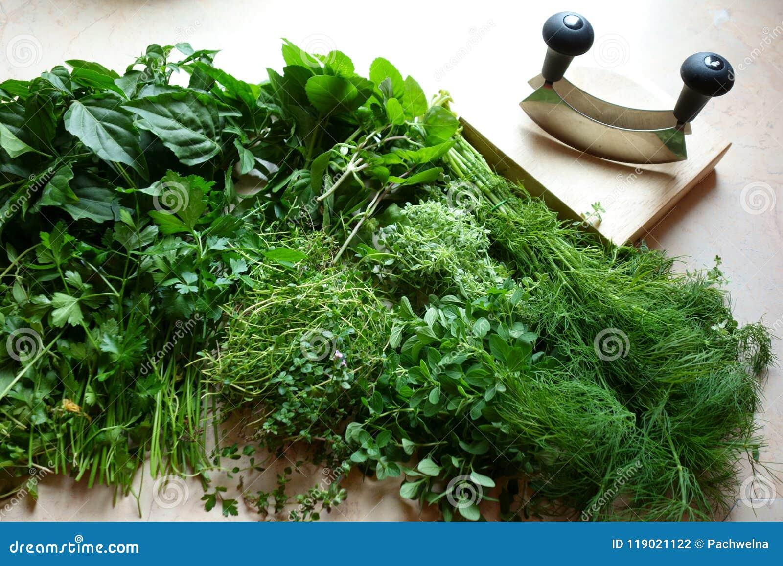 Ervas e utensílios frescos do desbastamento