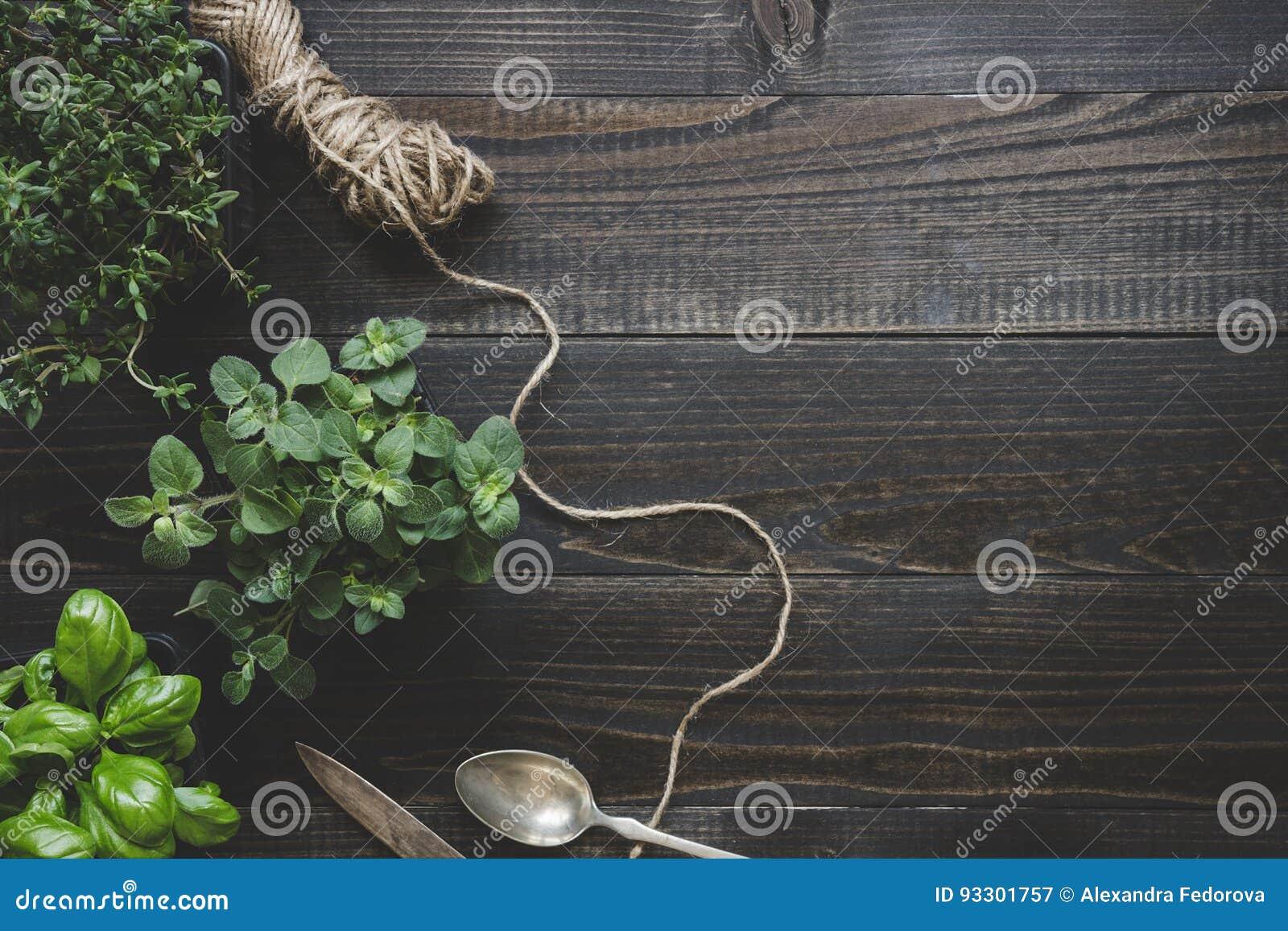 Ervas frescas na tabela de madeira escura, vista superior Fundo rústico com espaço da cópia