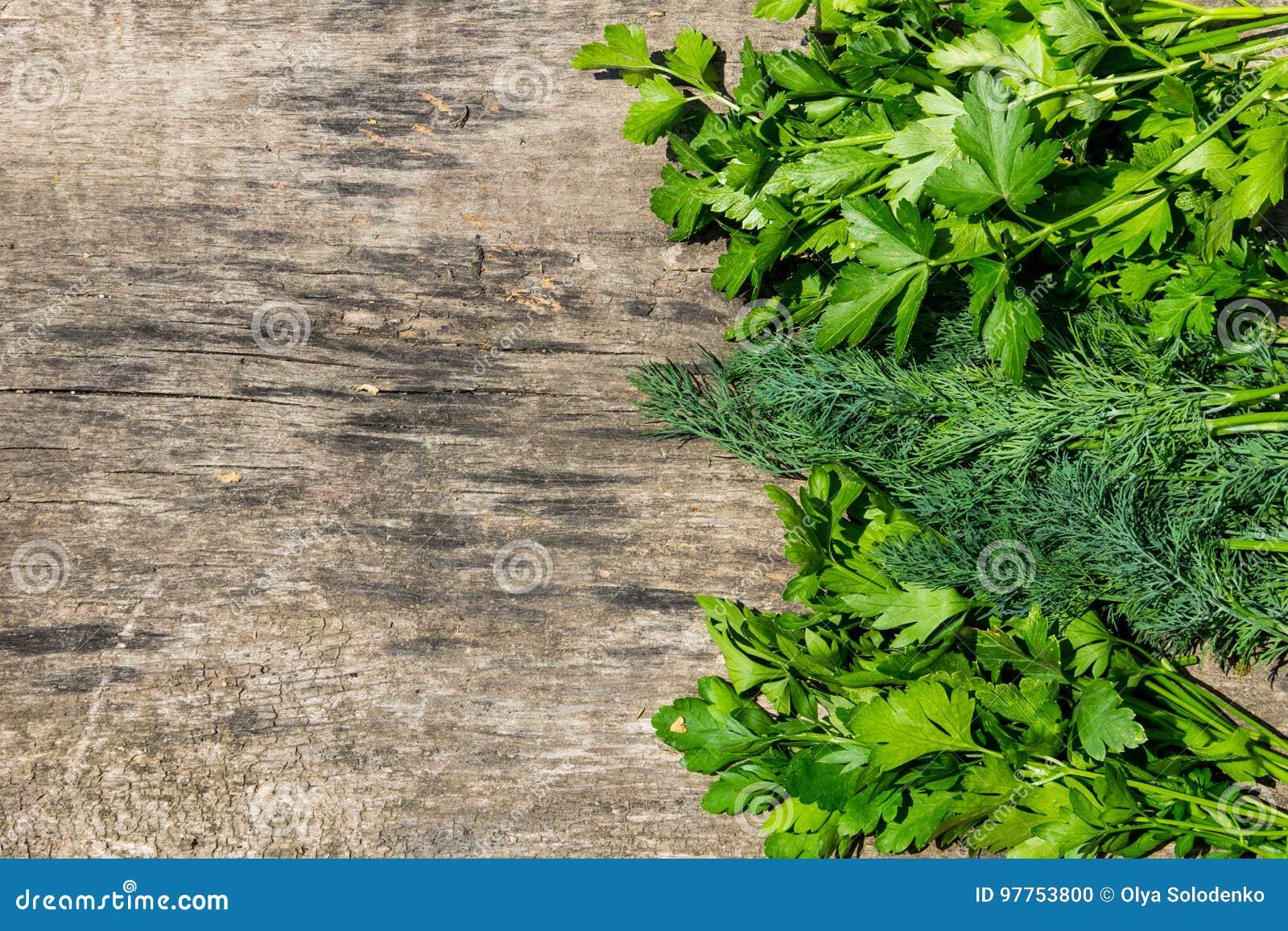 Ervas verdes frescas do aneto e da salsa na tabela de madeira rústica