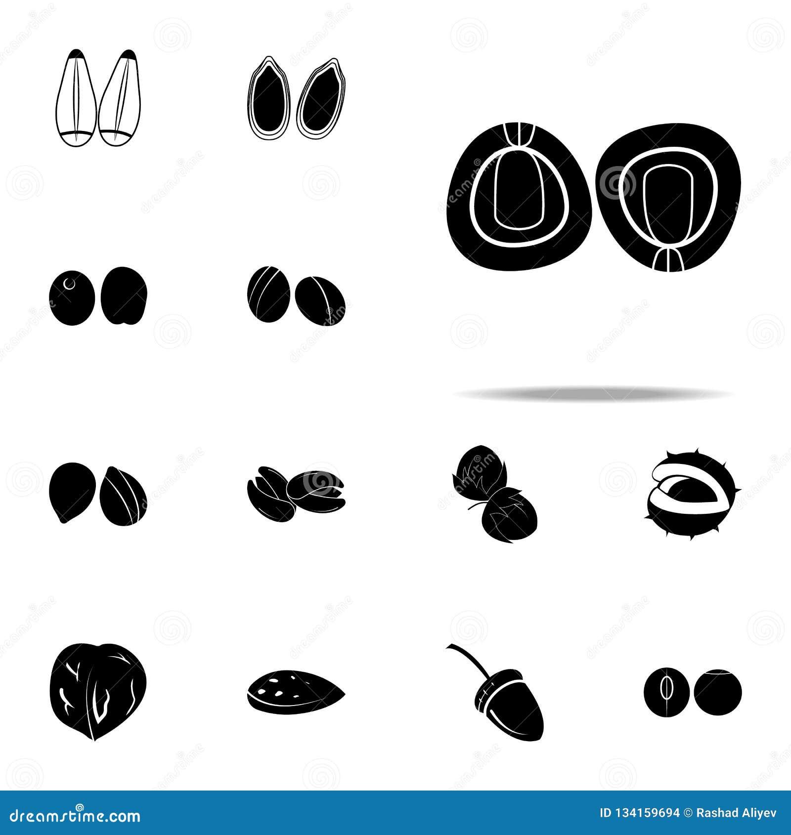 Erwtenpictogram voor Web wordt geplaatst dat en het mobiele algemene begrip van notenpictogrammen