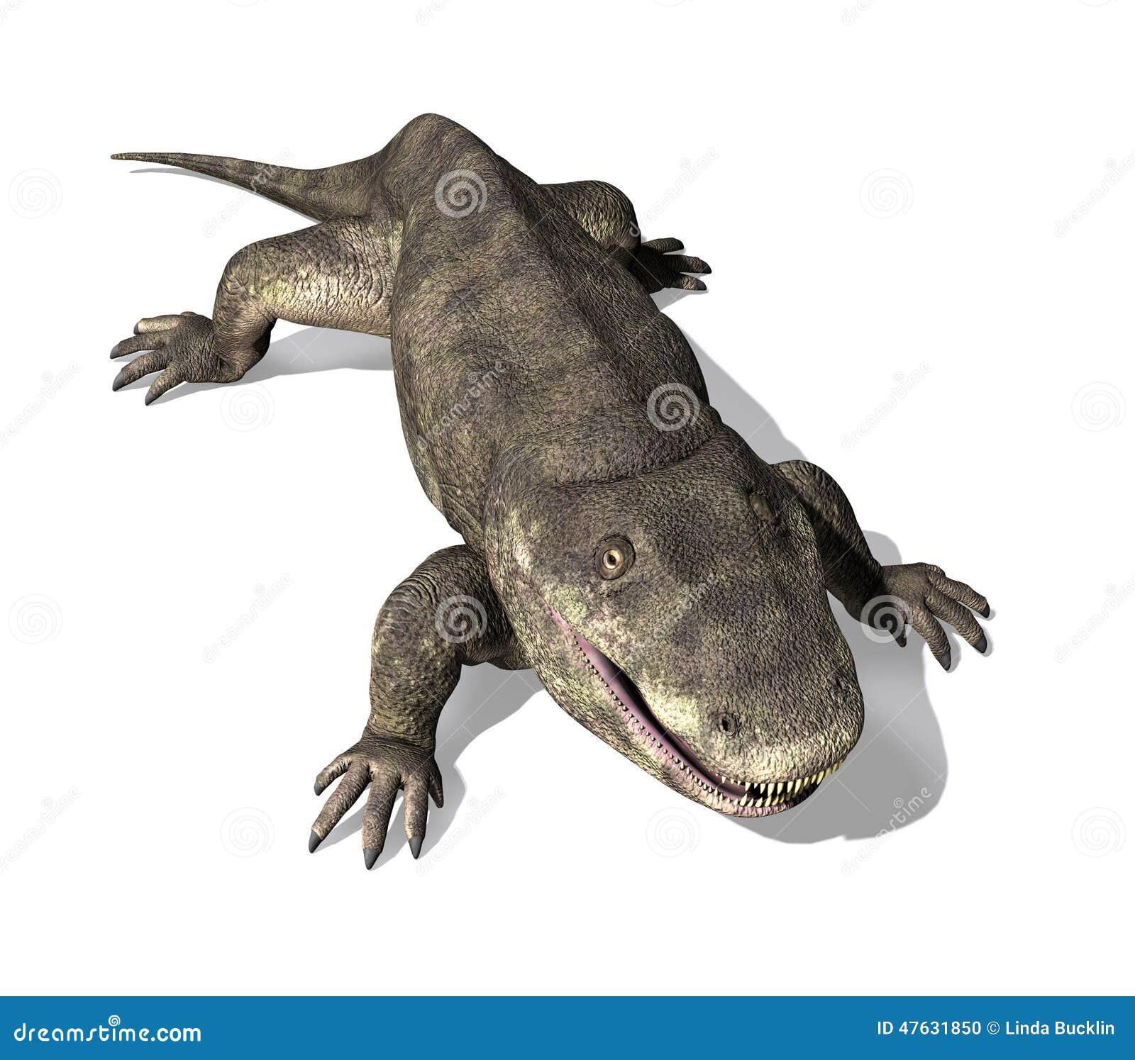 Eryops - Voorhistorische Amfibie 2