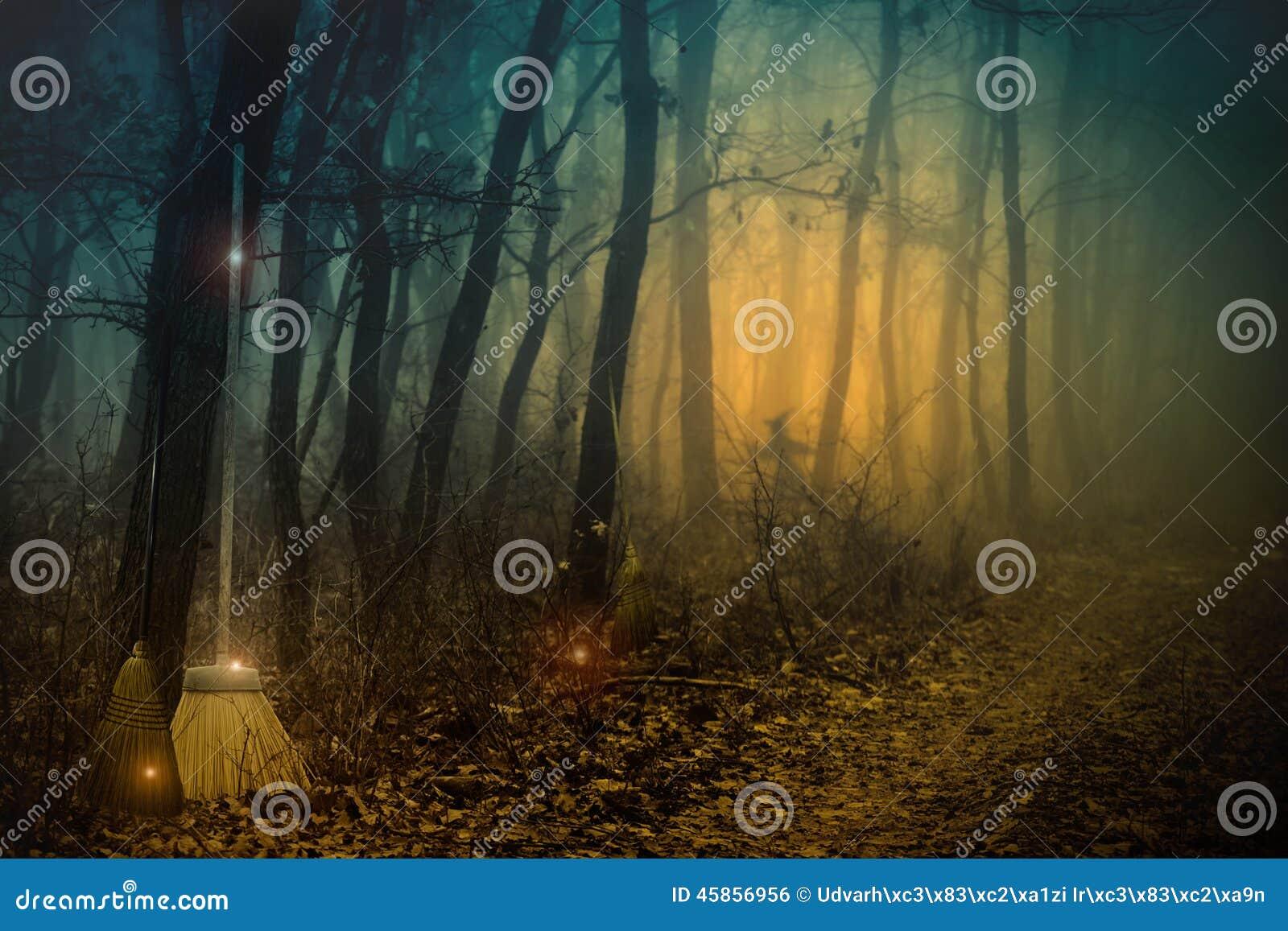 es ist ein sabbat der hexen stockfoto bild von nebelhaft mystisch 45856956. Black Bedroom Furniture Sets. Home Design Ideas
