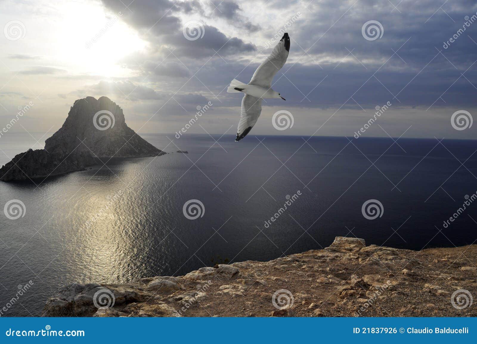 Es Vedra island (Ibiza)