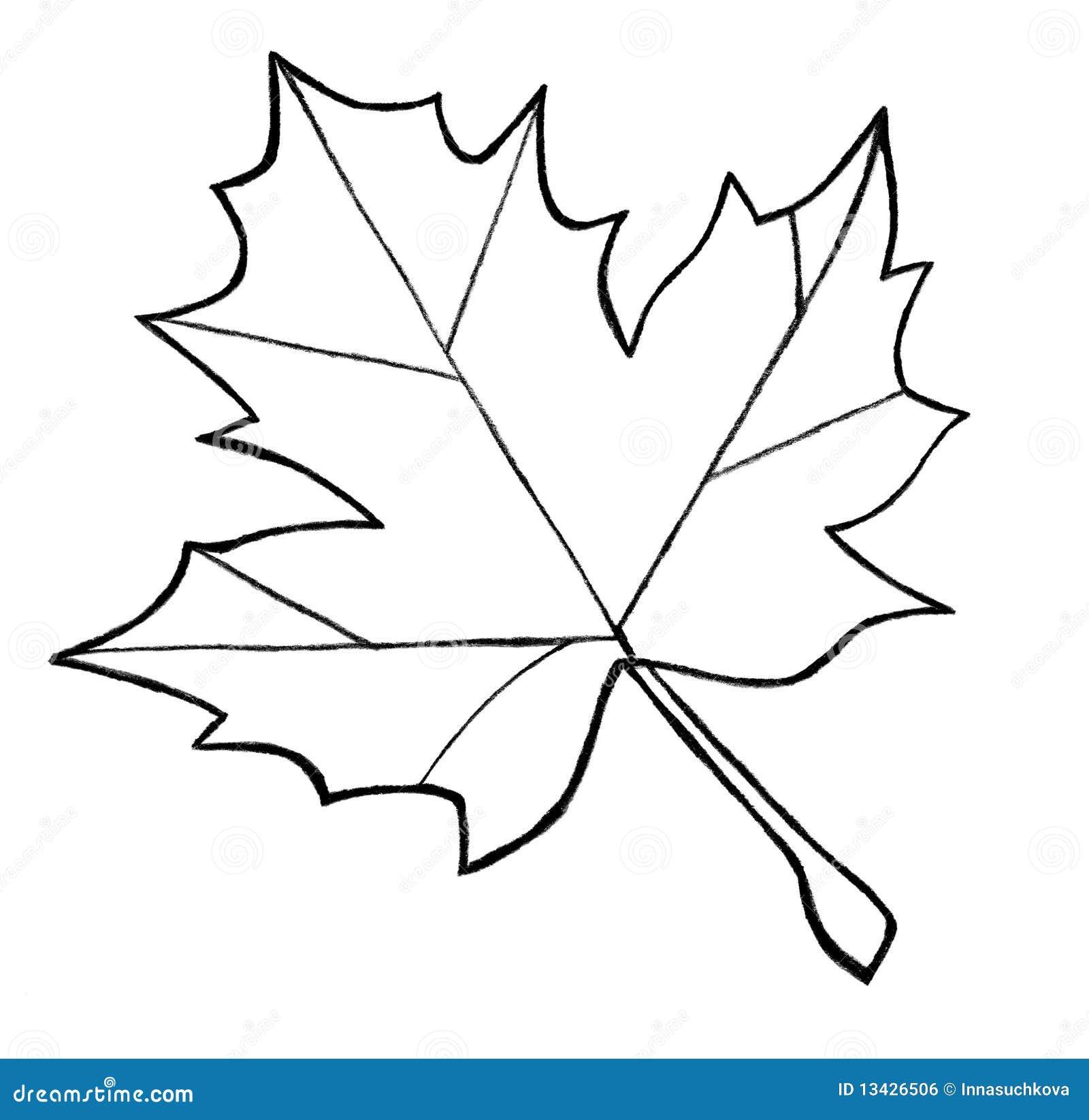 Contour Line Drawing Leaf : Esboço da folha de plátano ilustração stock