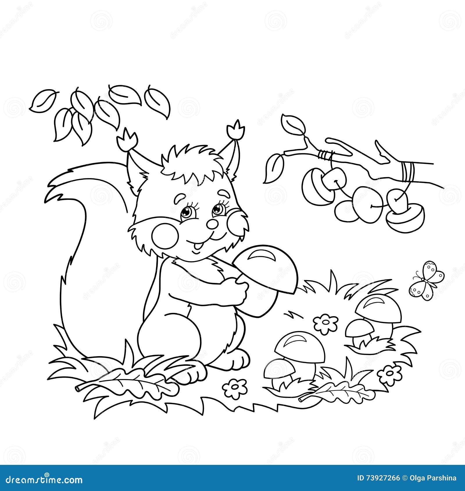 esbo u00e7o da p u00e1gina da colora u00e7 u00e3o do esquilo dos desenhos animados com os cogumelos no prado com