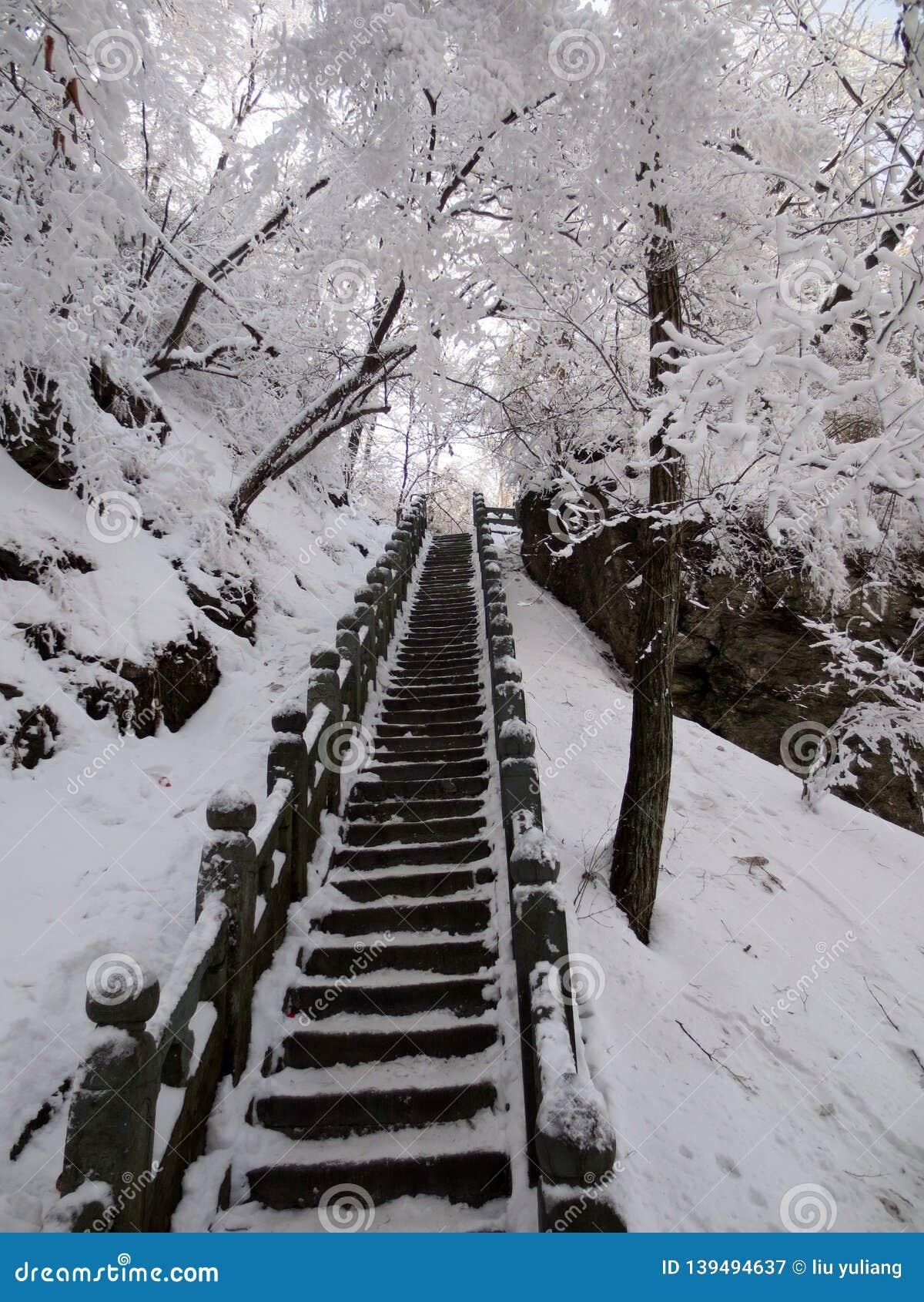 A escadaria antiga após a neve