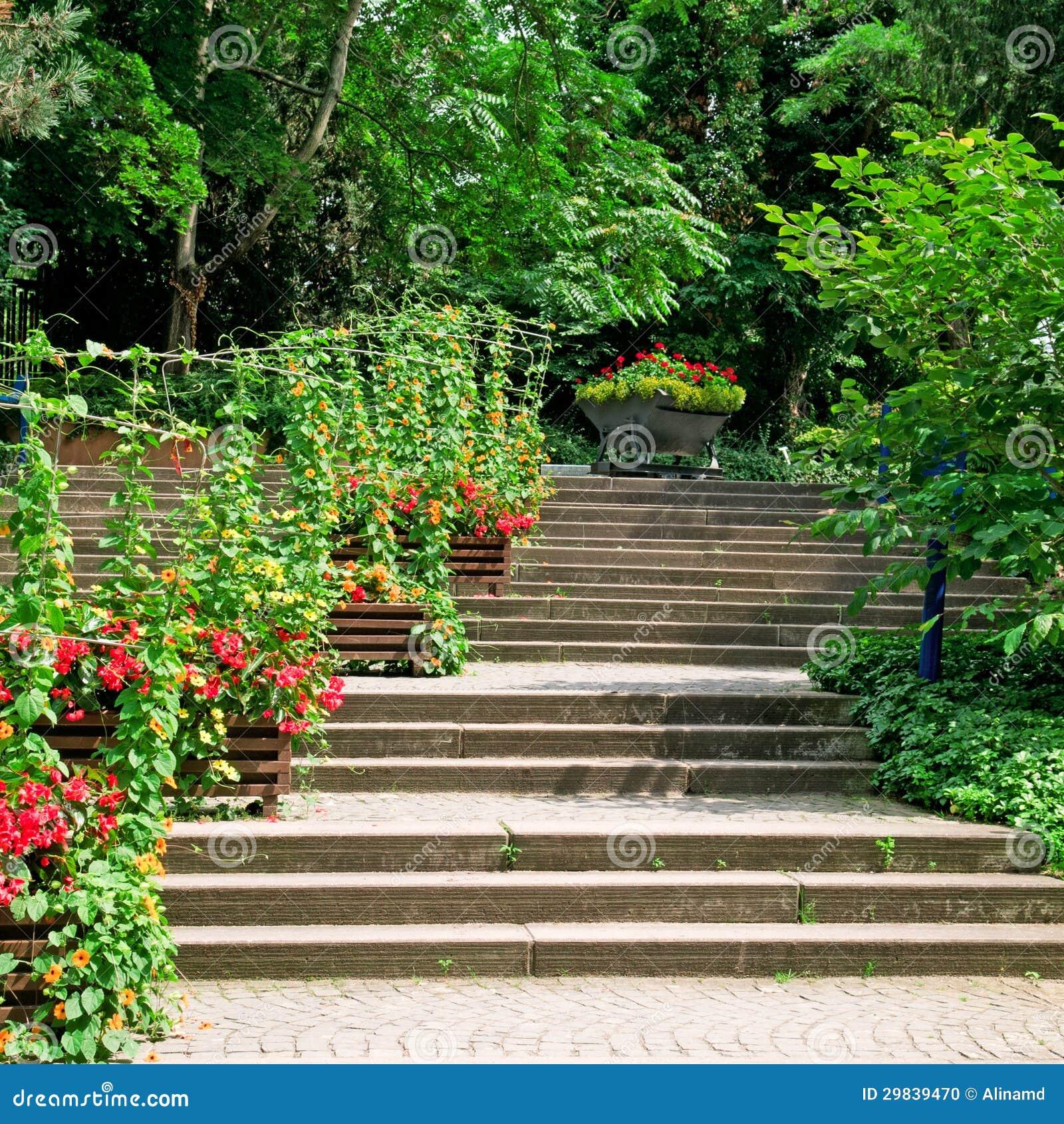 Escadaria no parque