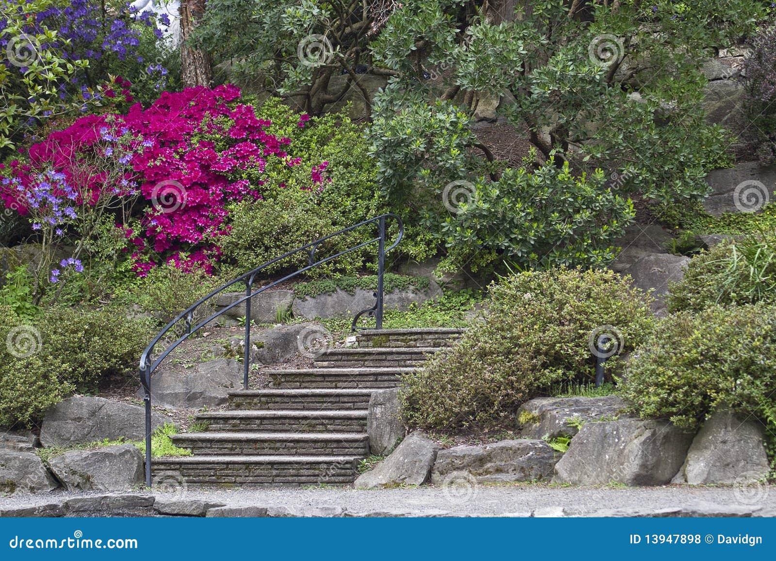 escada de madeira no jardim:Escadas De Pedra No Jardim Do Rhododendron Fotos de Stock Royalty Free