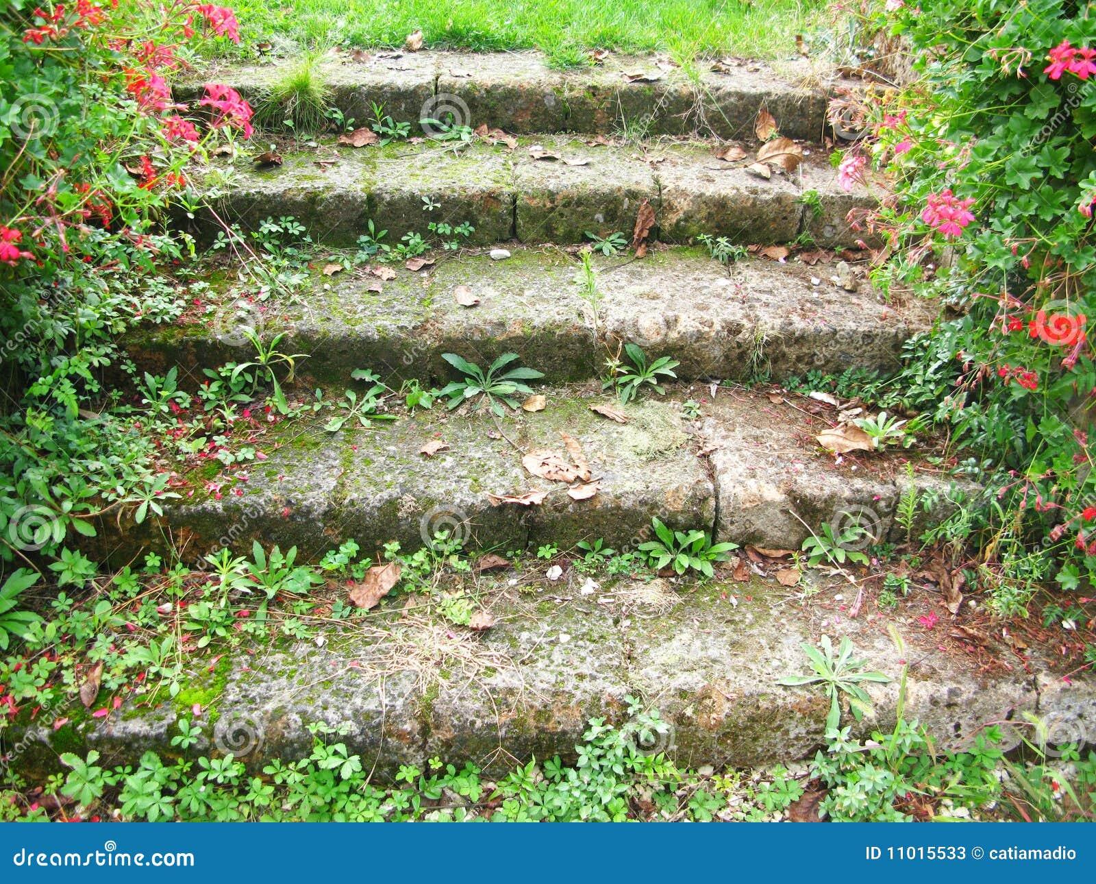 escada de pedra para jardim