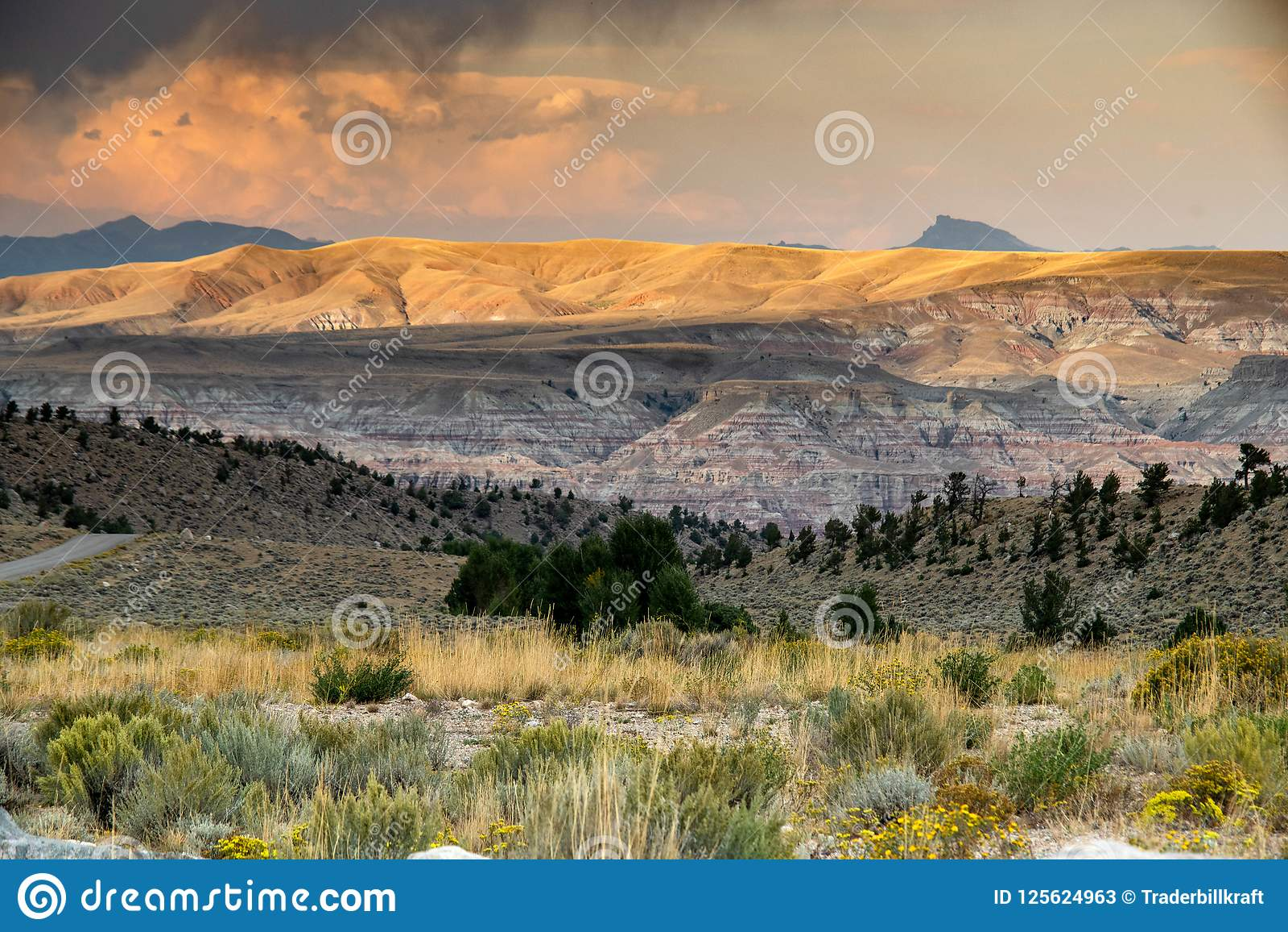 Escala dos carneiros de Bighorn
