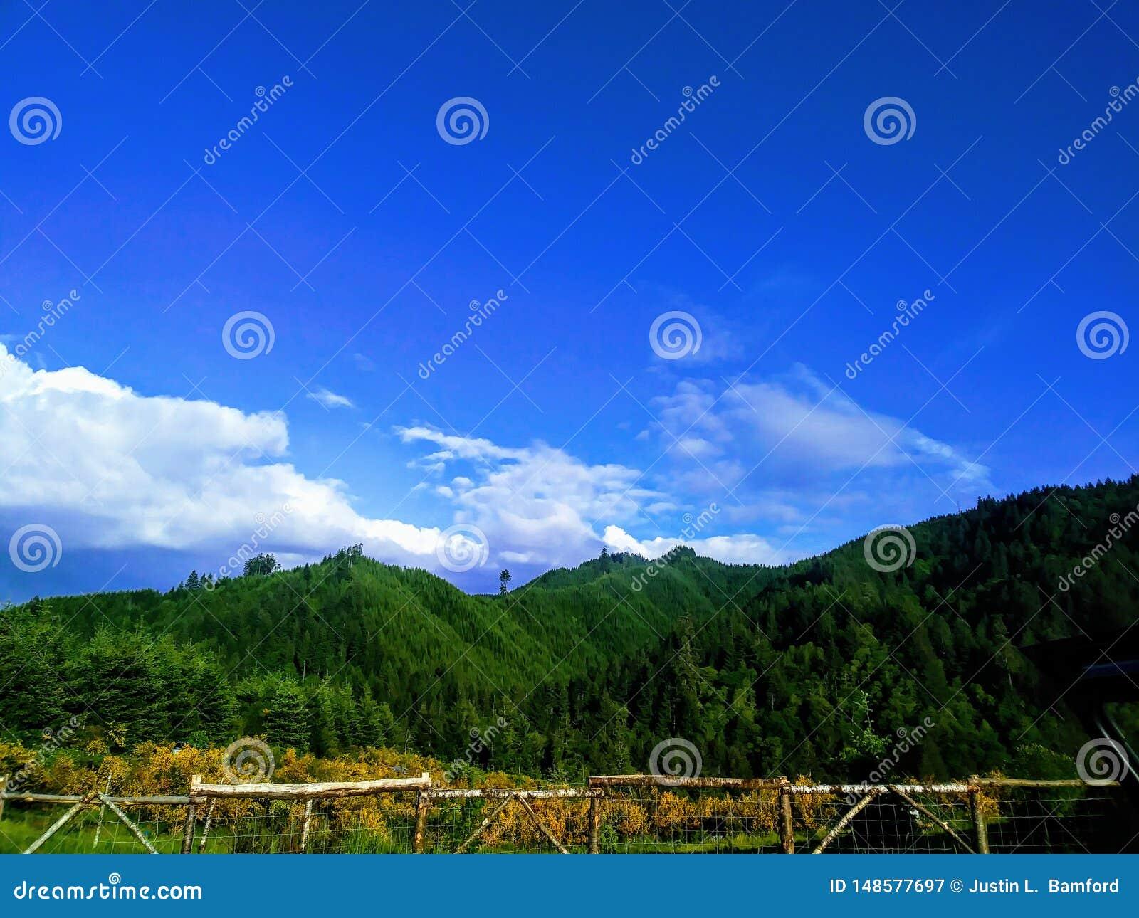 Escala litoral Forrest de Oregon
