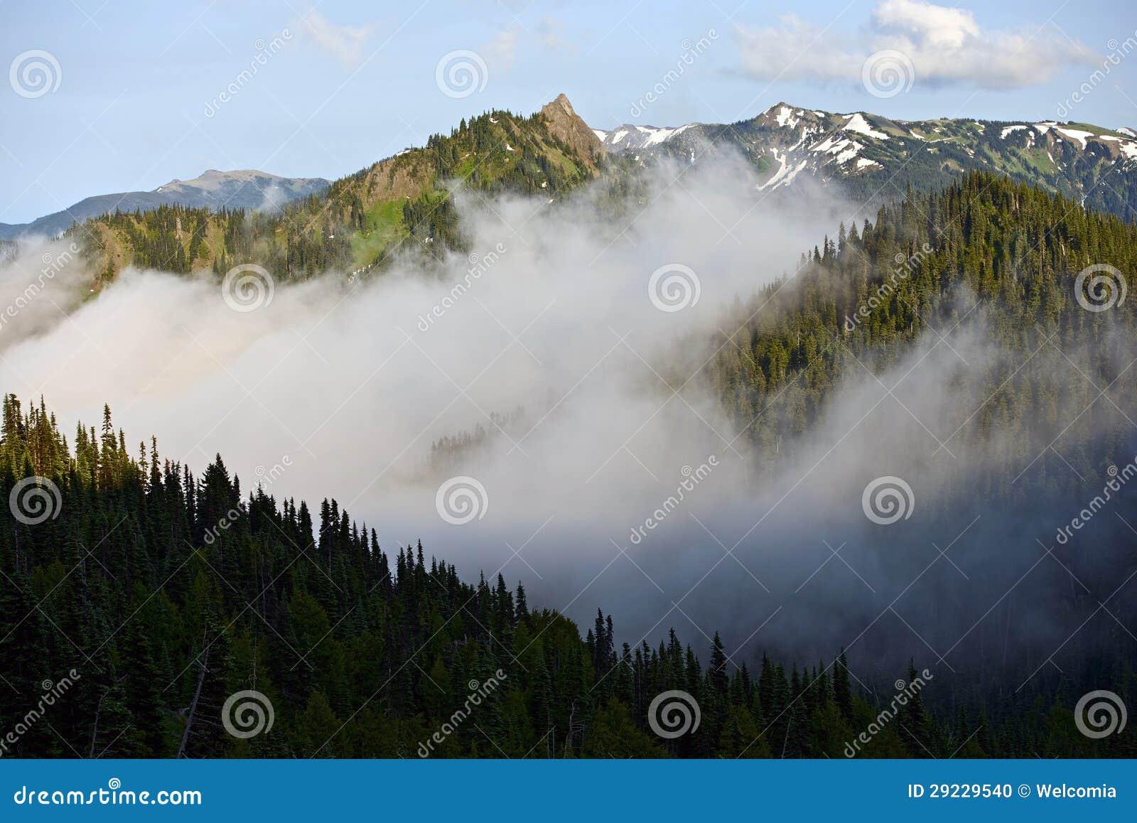 Download Escala olímpica foto de stock. Imagem de cedro, soggy - 29229540