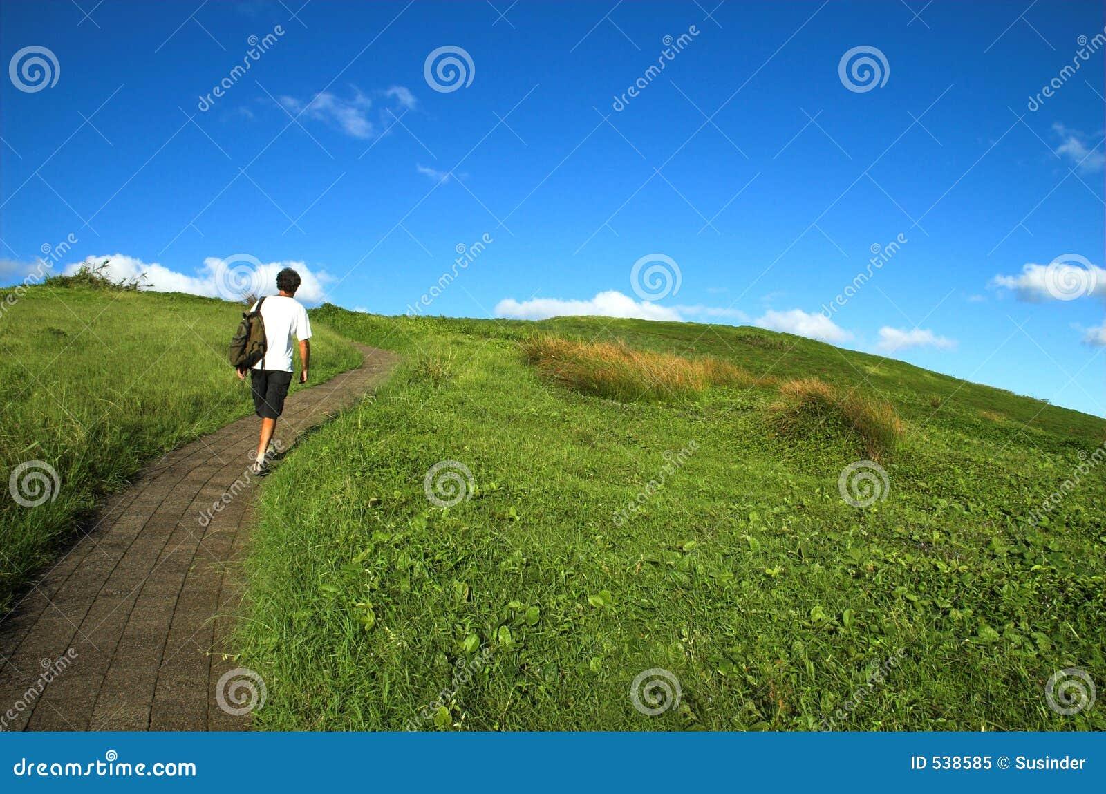 Escale cada montanha