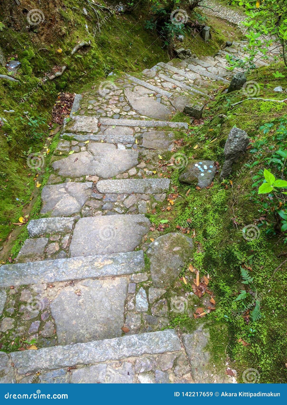 Escalera de piedra con la roca cubierta de musgo