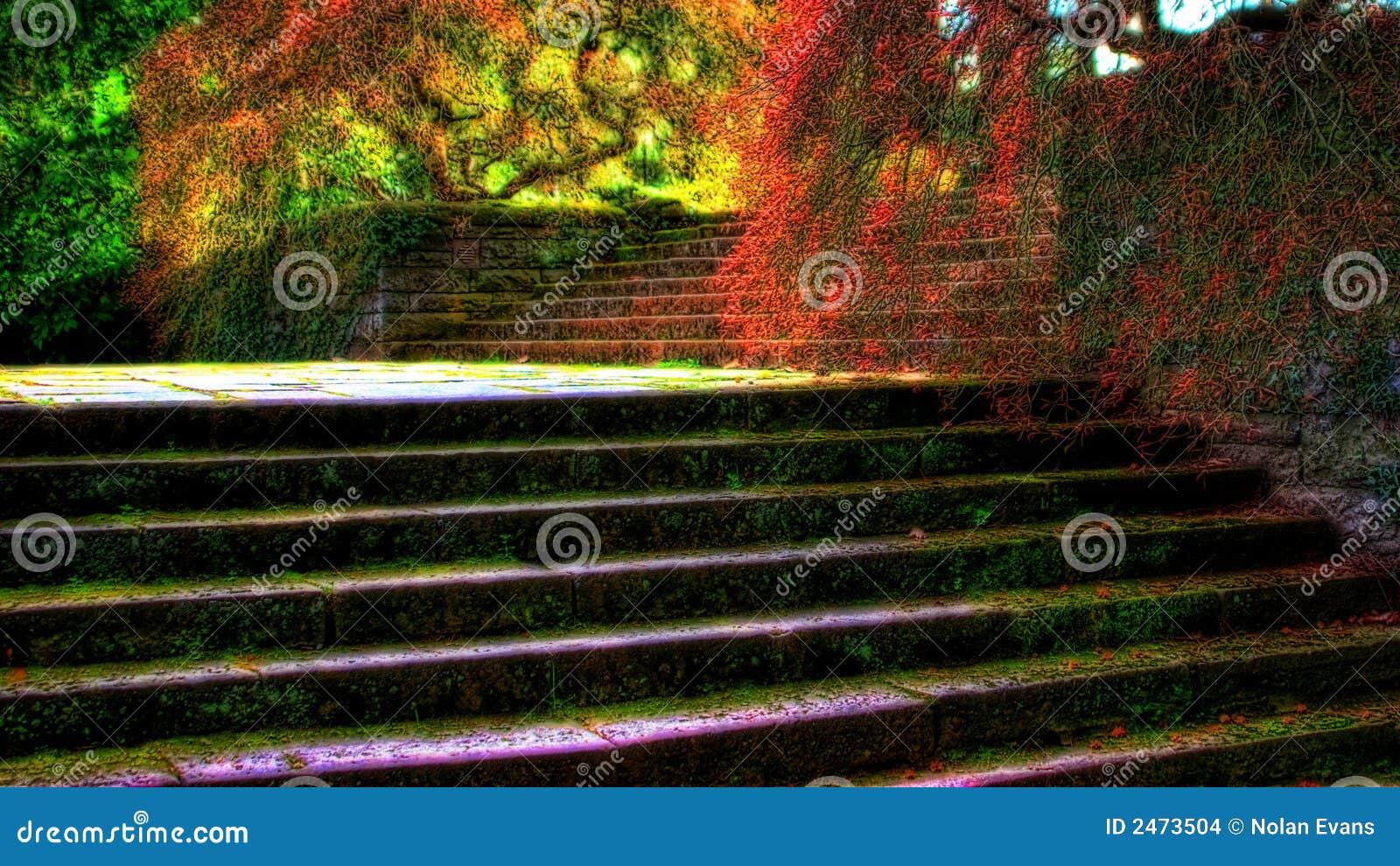 Escaleras del jard n imagenes de archivo imagen 2473504 - Escaleras jardin ...