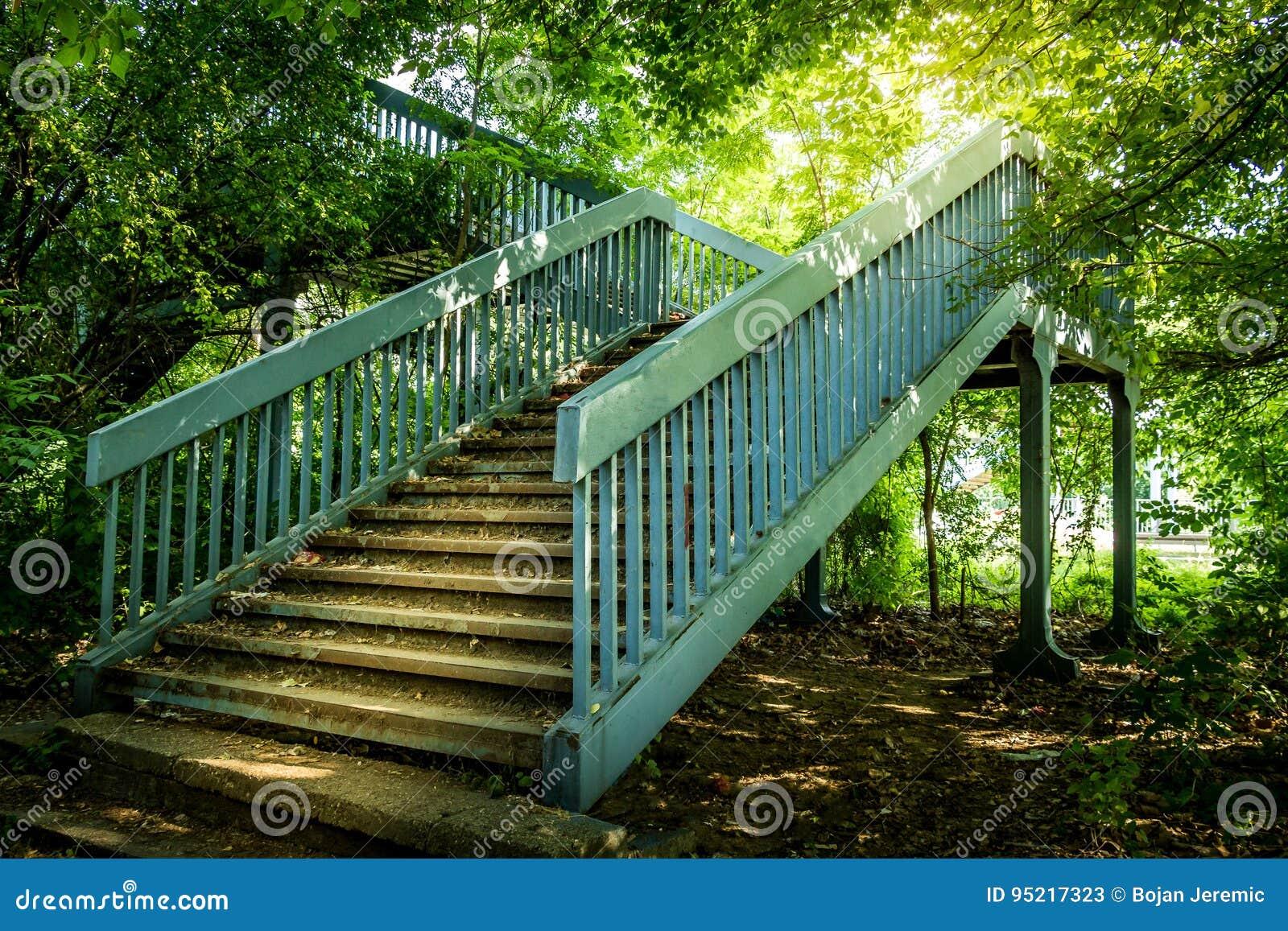 Escaleras del metal en el bosque