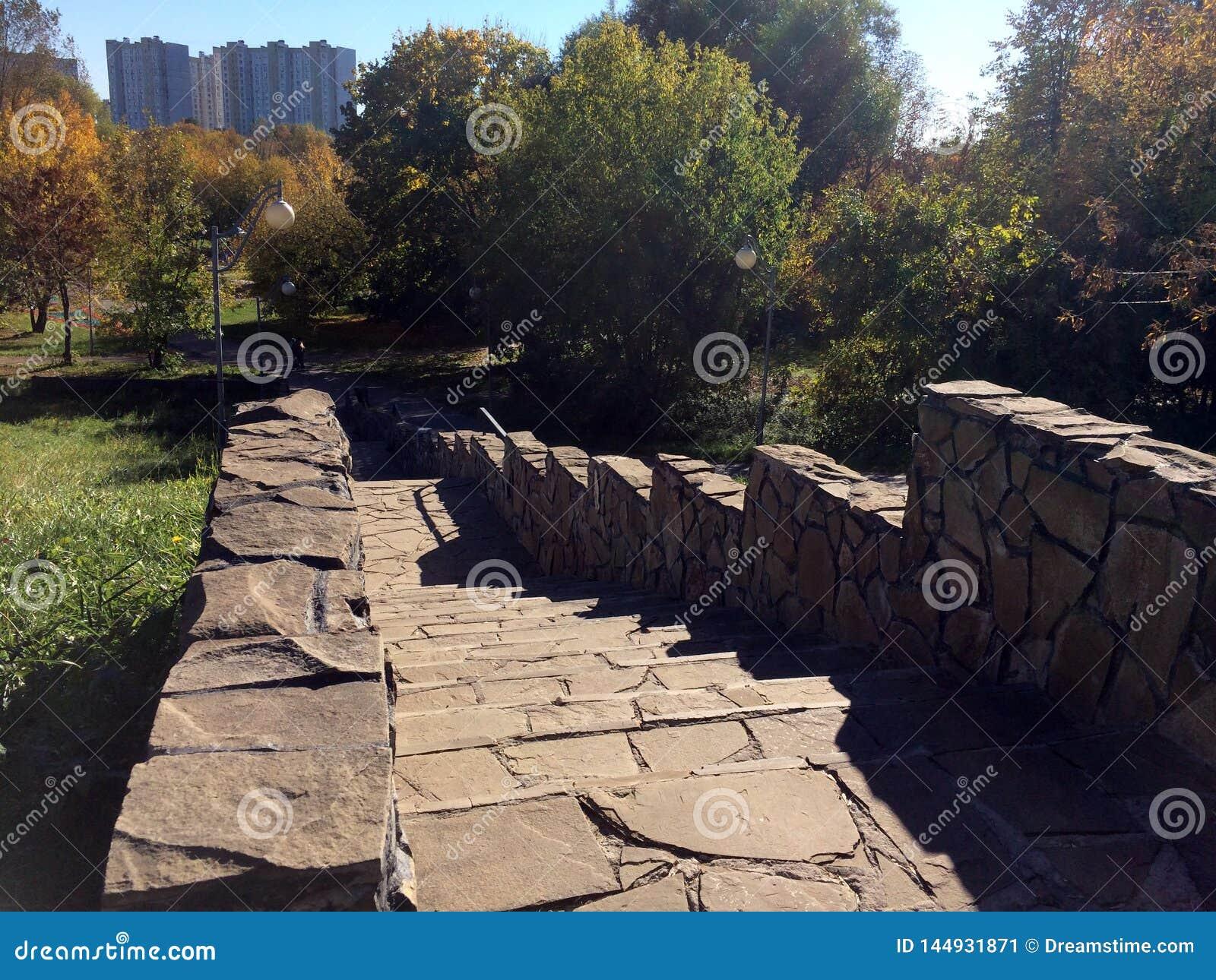 Escalier en parc d automne