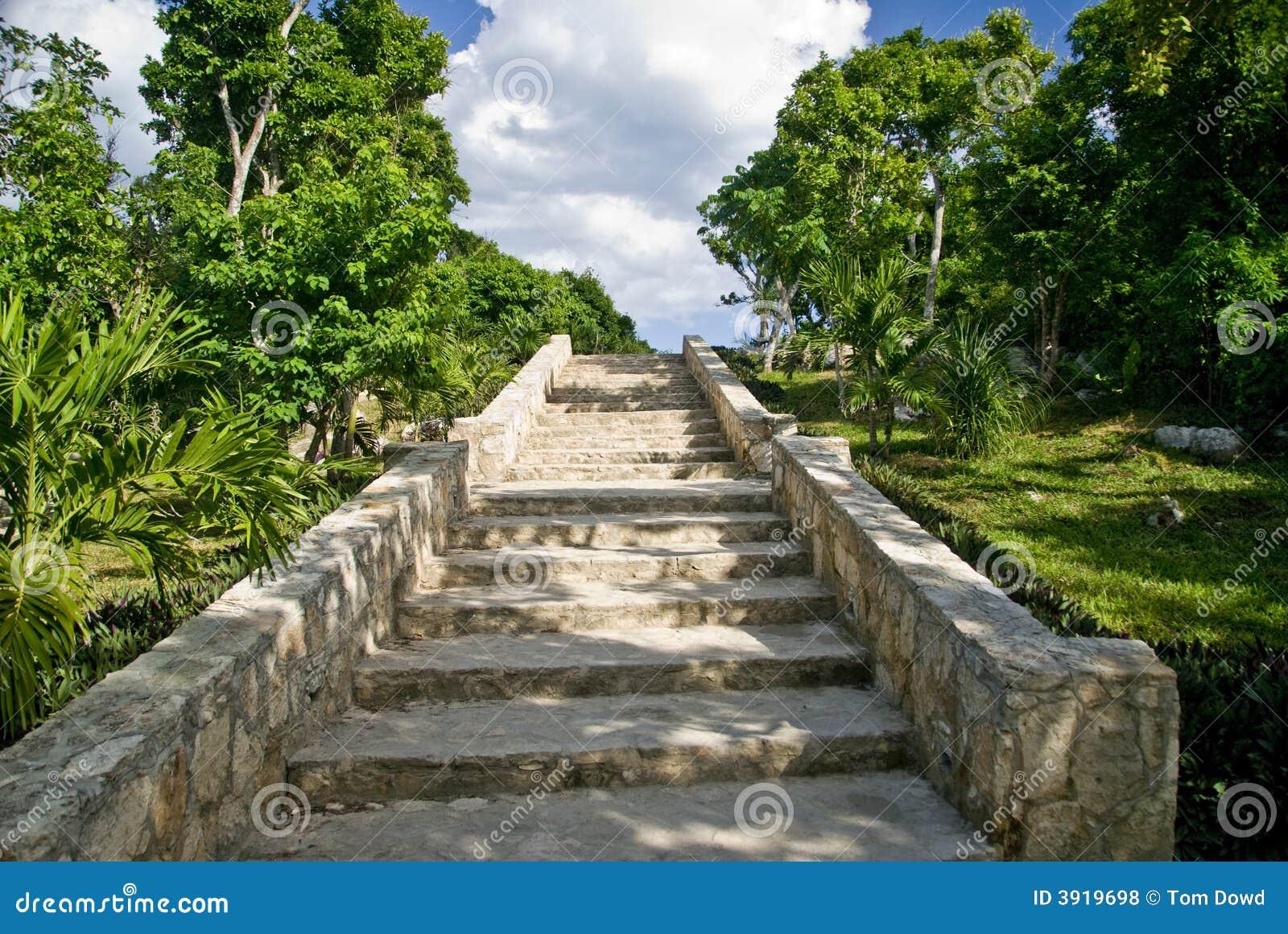 escalier en pierre aux ruines maya photos libres de droits. Black Bedroom Furniture Sets. Home Design Ideas