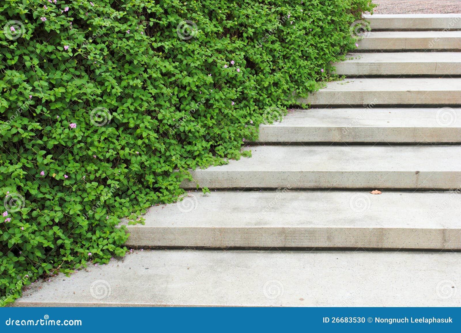 Escalier En Pierre Avec La Centrale Dans Le Jardin Photo