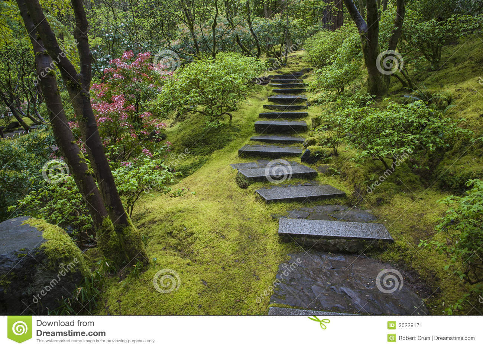 Escalier en pierre dans un jardin image stock image 30228171 for Escalier dans un jardin