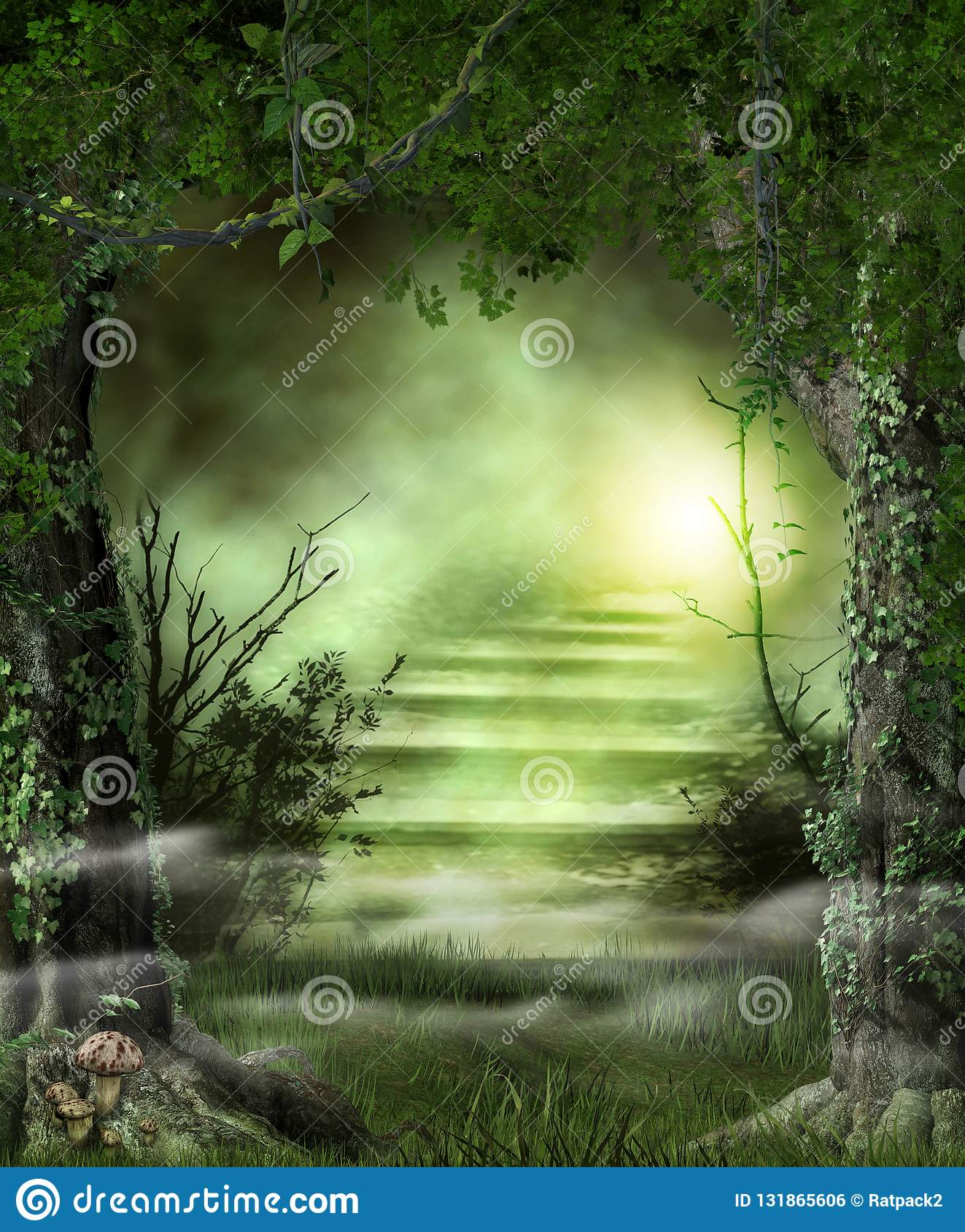 Escaliers de chemin forestier à une lumière merveilleuse