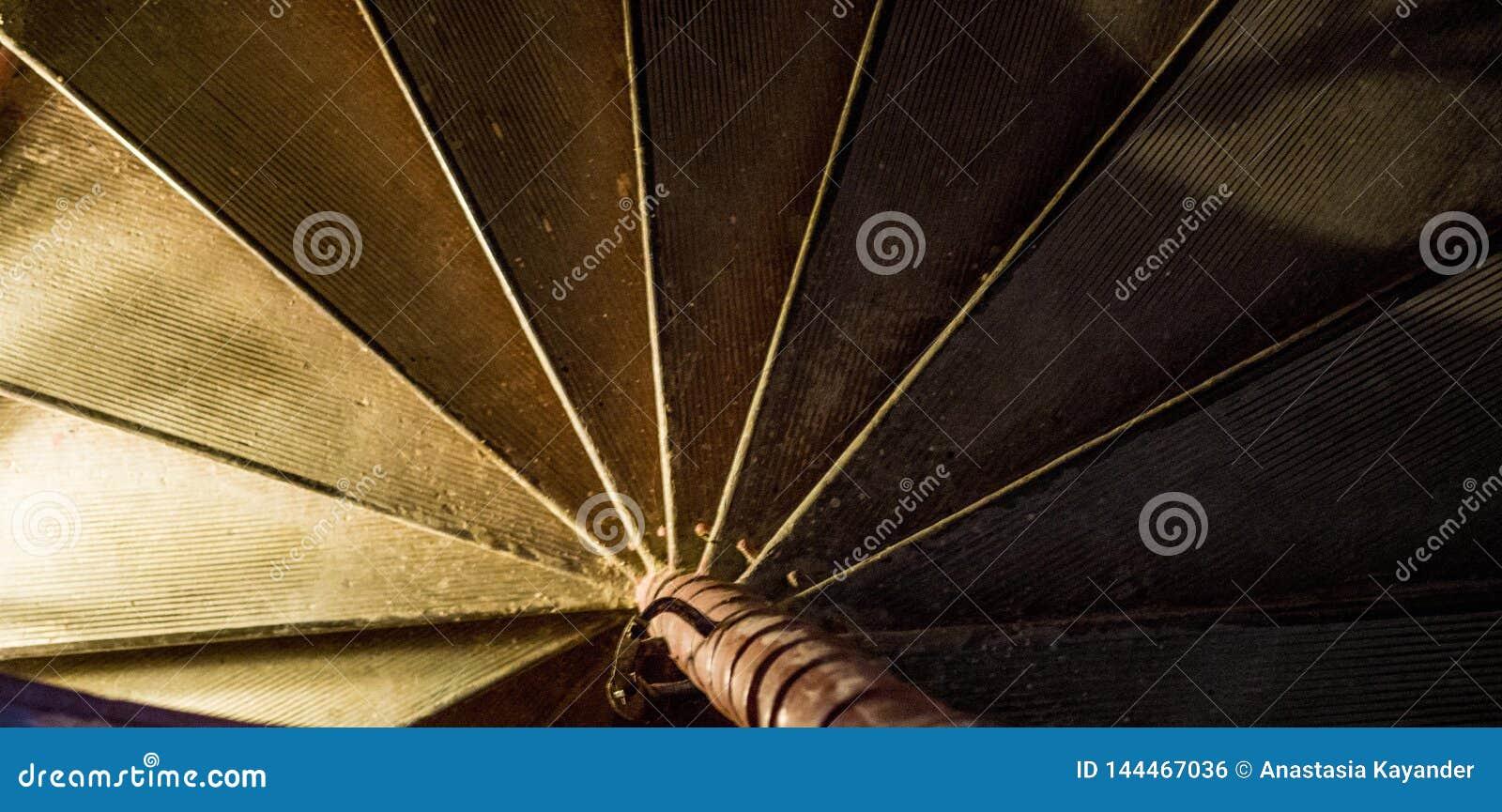 Escaliers hélicoïdaux d escalier en spirale de fond foncé de résumé