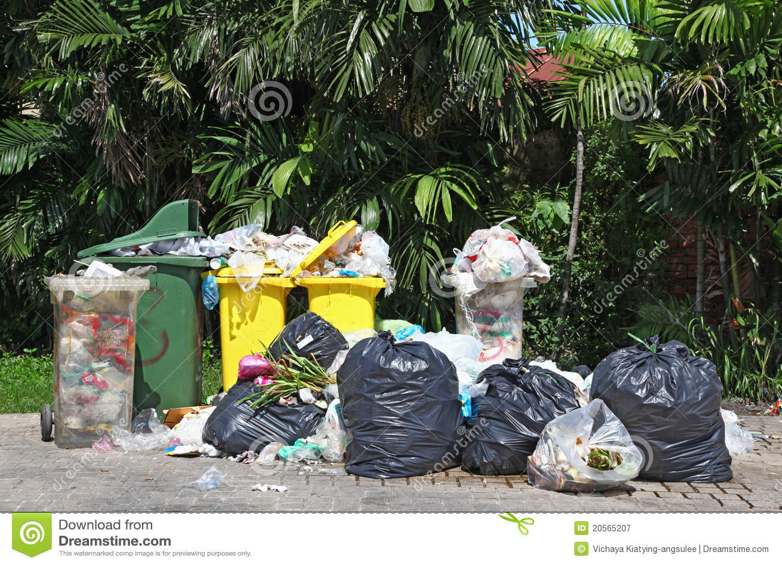 Escaninho de lixo cheio