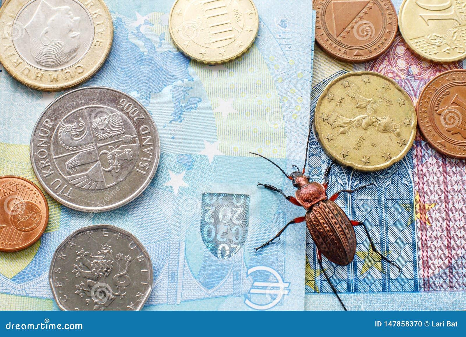 Escarabajo molido en la cuenta veinte euros, pequeñas monedas de Europa Concepto: escarabajo del dinero