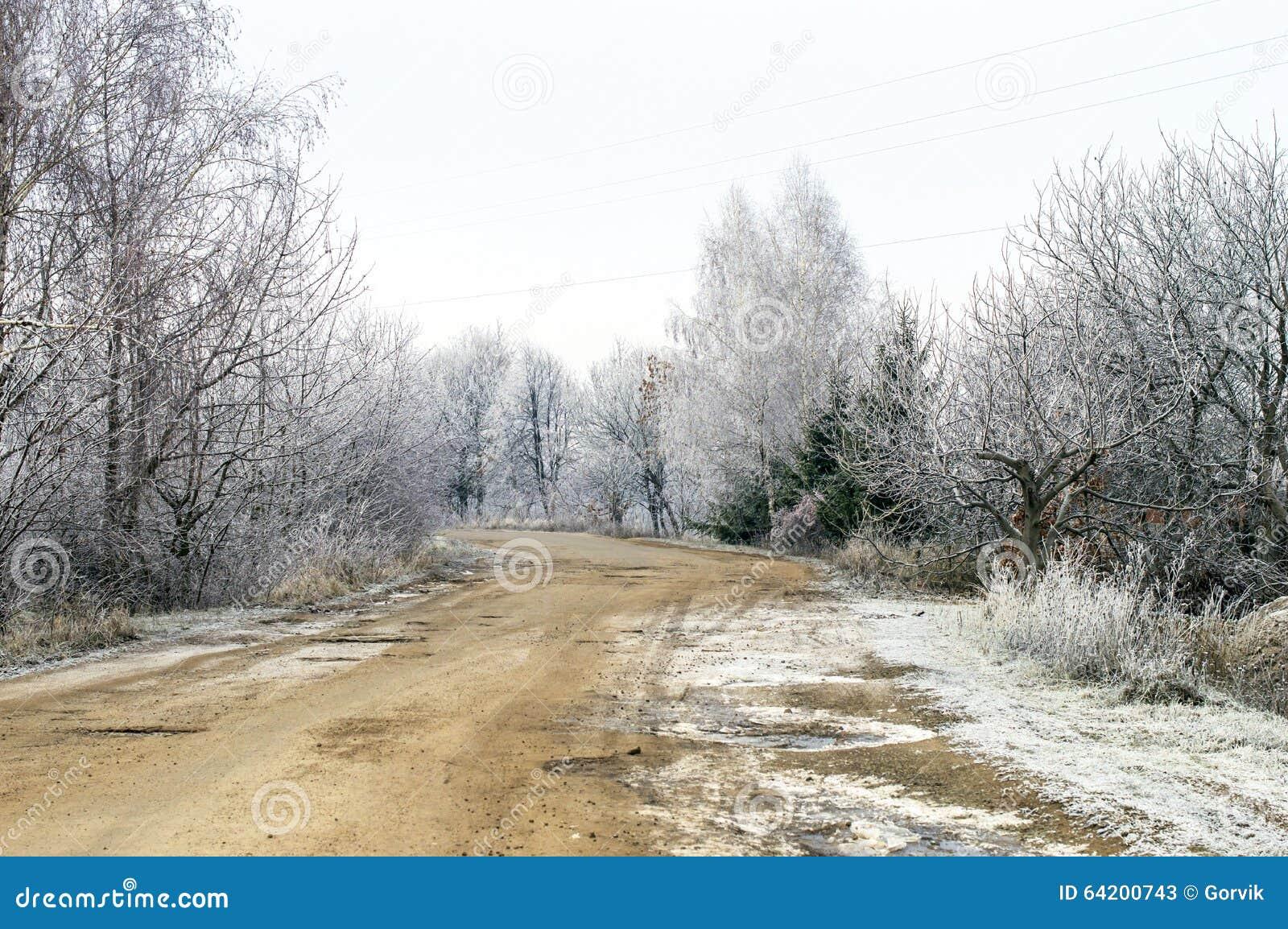 Escarcha blanca en árboles y el camino