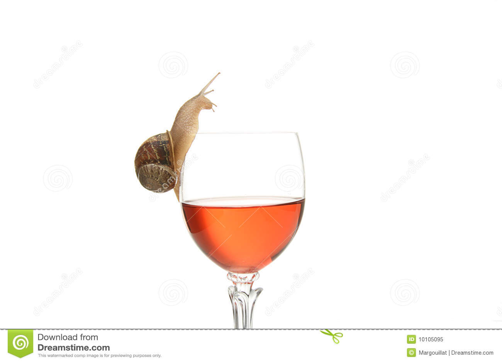 Escargot potable d'alcool image stock. Image du potable - 10105095