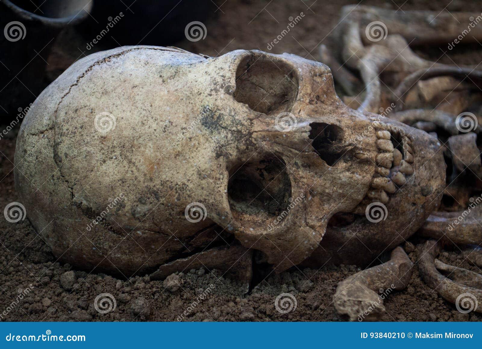 Escavações arqueológicos de um esqueleto humano antigo e de um crânio humano