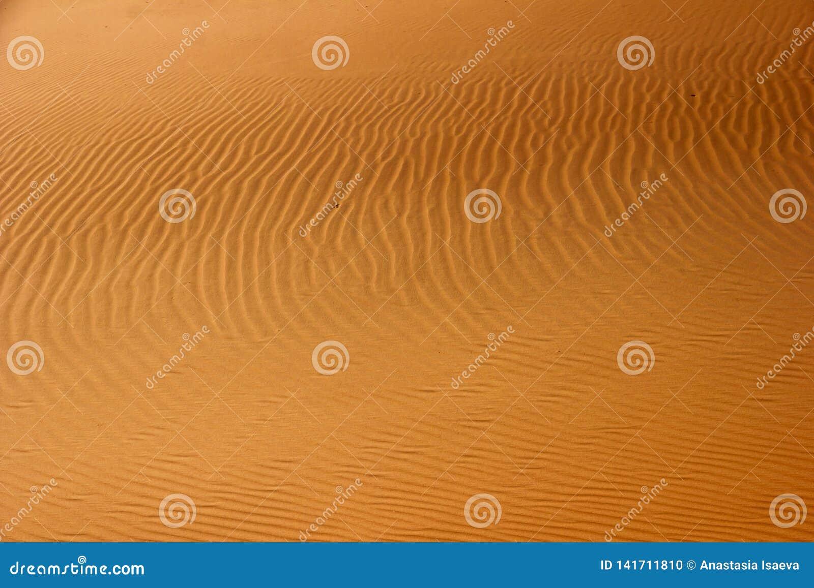 Escena abstracta del desierto Modelo de la arena