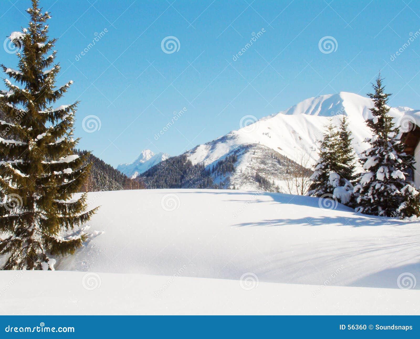 Escena alpestre de la nieve del invierno