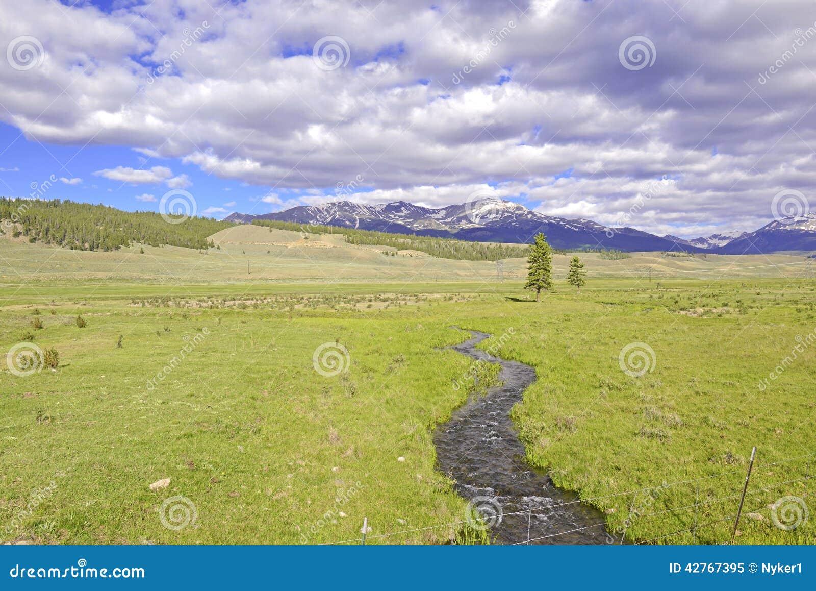 Escena alpina con la corriente en Rocky Mountains