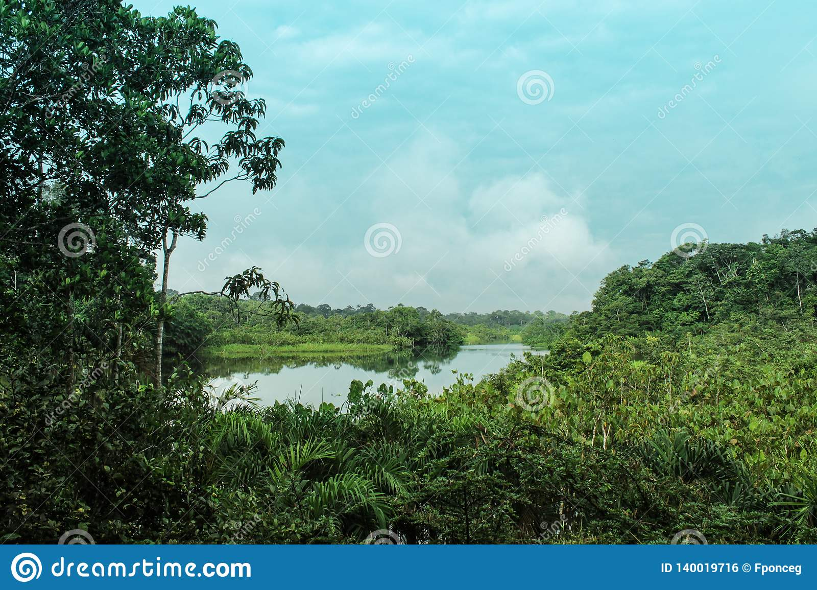 River scene in the amazonía of ecuador