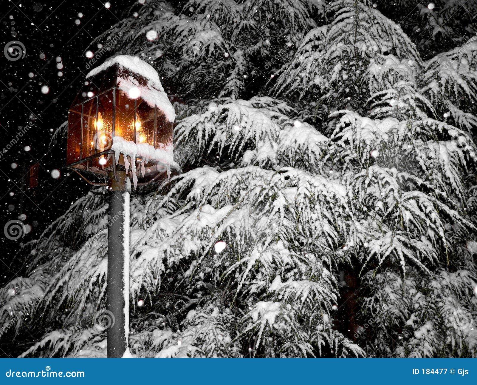 Escena hermosa, nevosa del invierno
