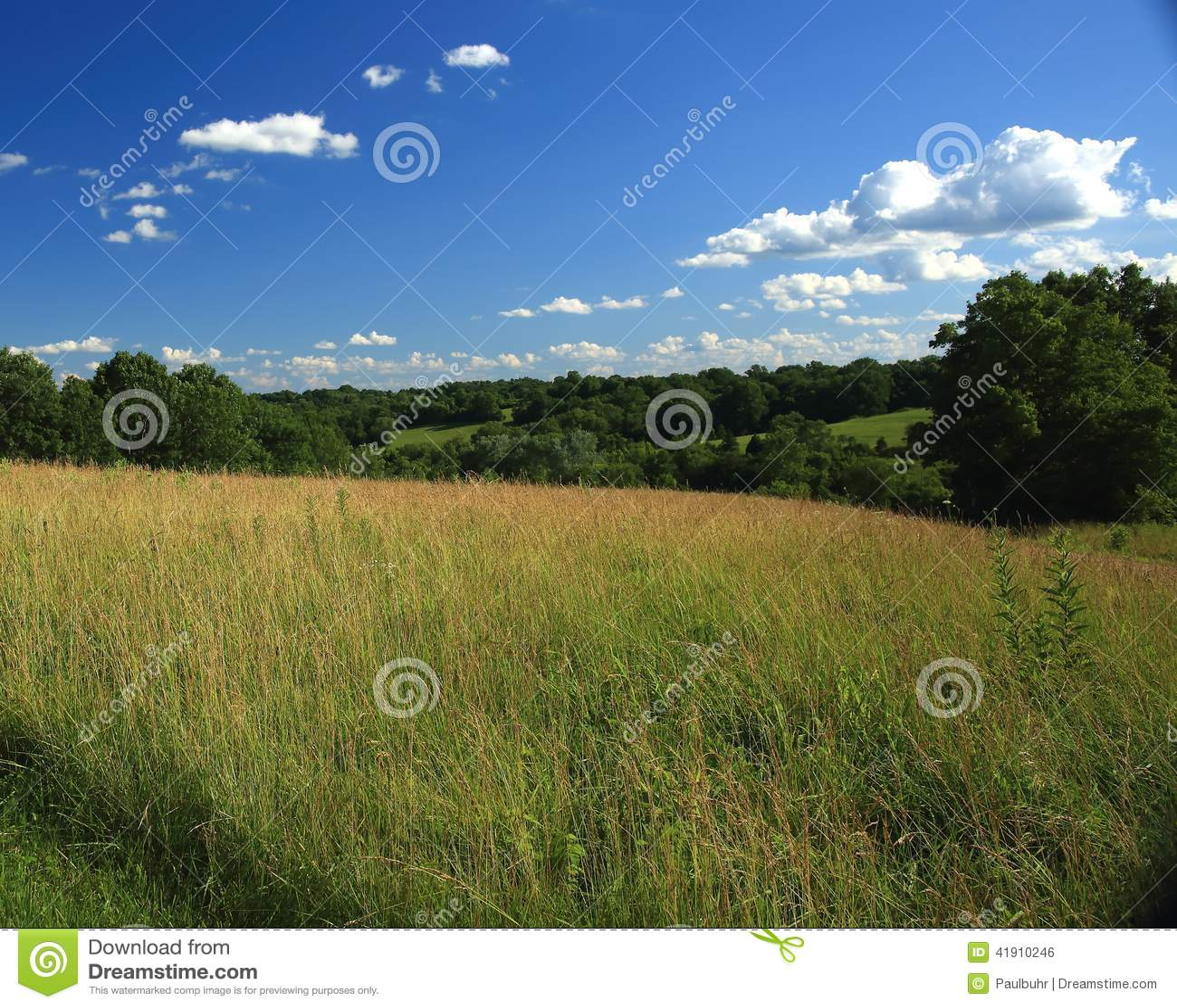 Escena pastoral de Missouri