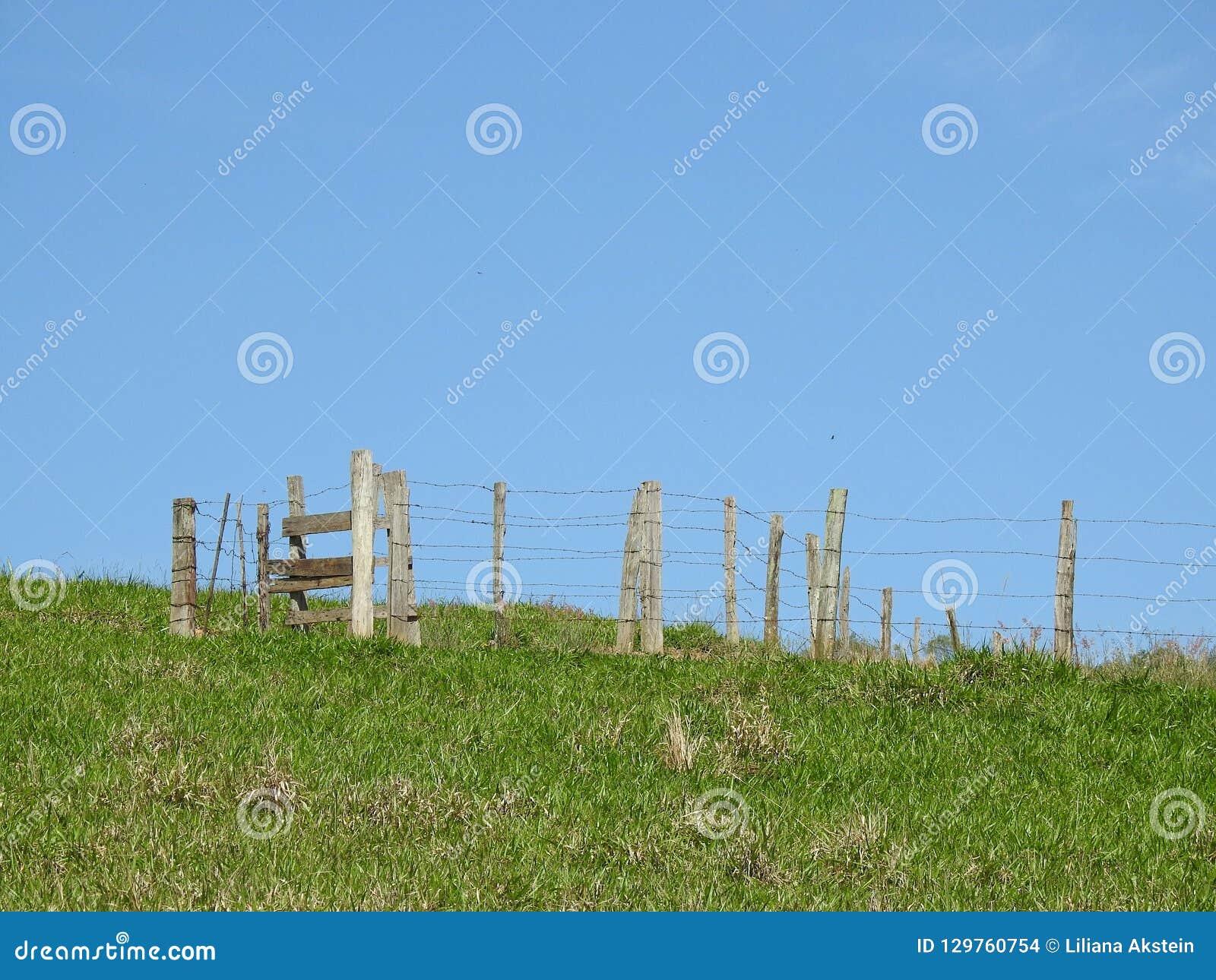 Escena rural: un recinto vacío del ganado en un campo herboso