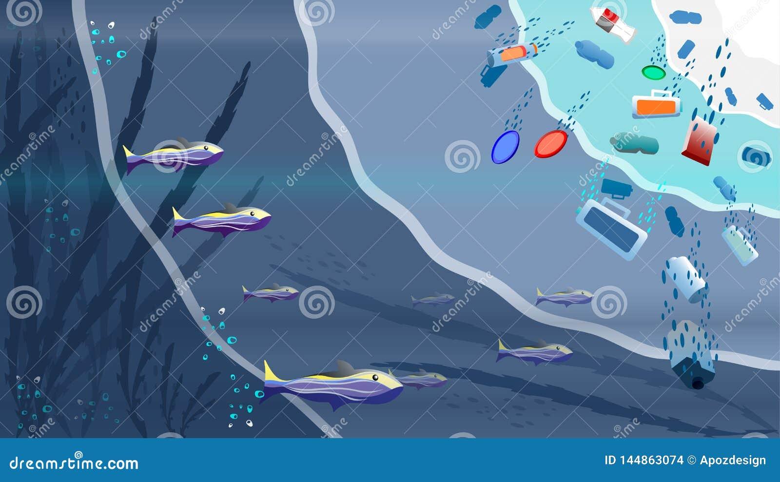 A escola dos peixes está no mar aberto
