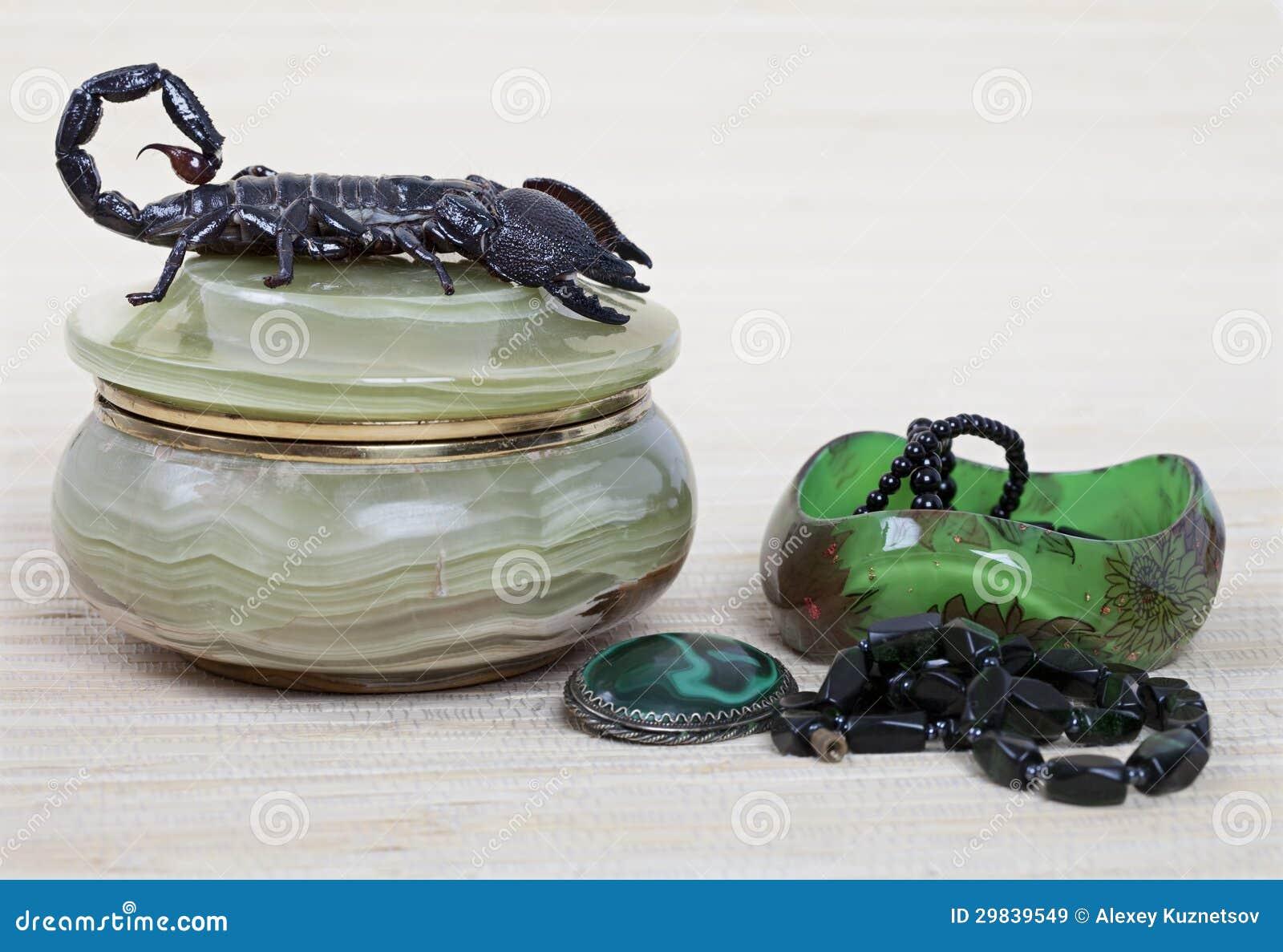 Ornamentação do escorpião e das mulheres