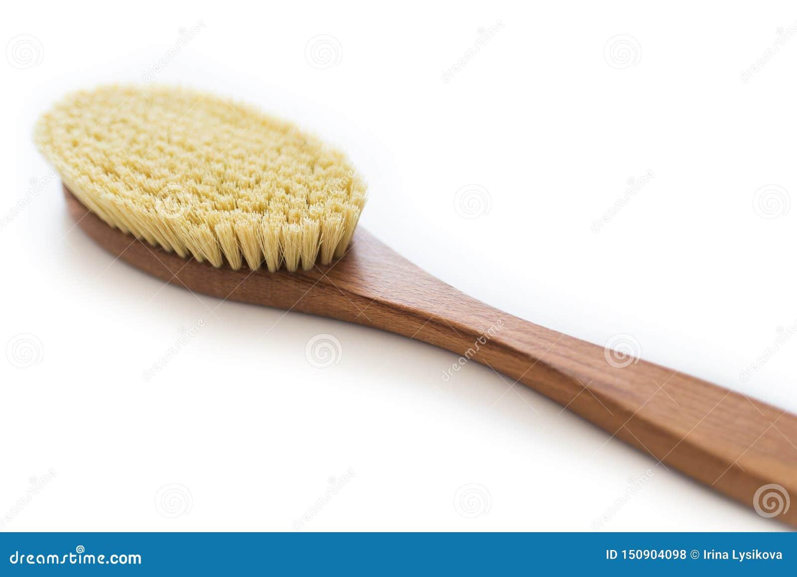 Escova orgânica dos termas para a massagem seca Escova do cacto massagem das Anti-celulites Conceito da beleza dos termas