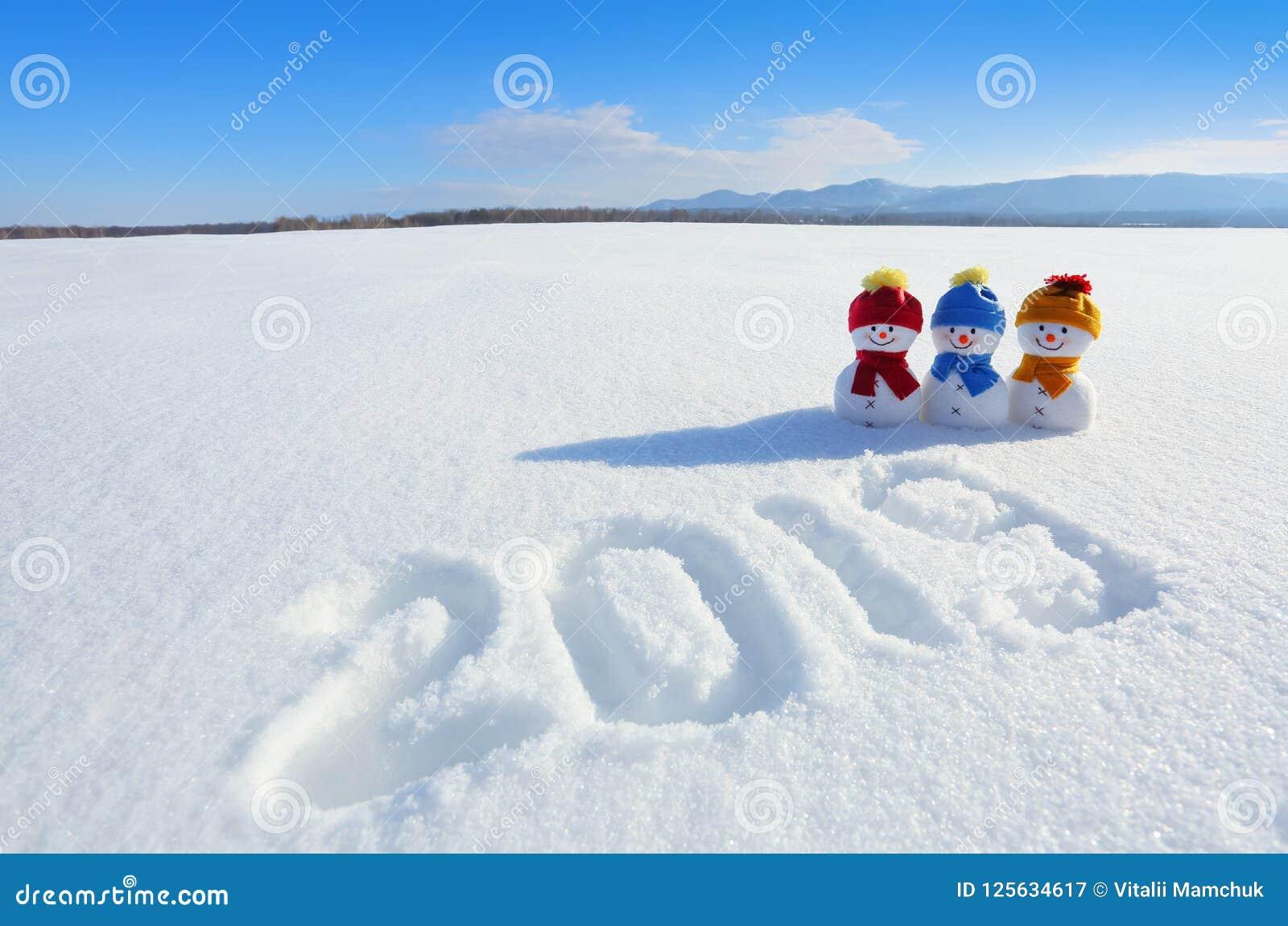 2019 escrito na neve O boneco de neve de sorriso com chapéus e os lenços estão estando no campo com neve Paisagem com montanhas