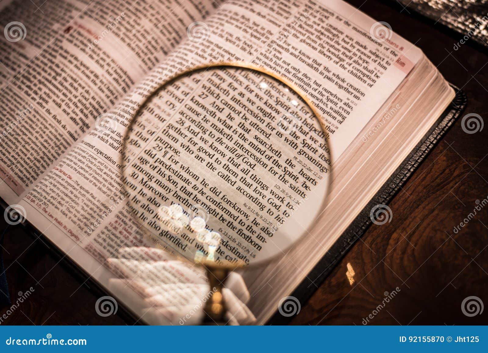 Escritura con el capítulo 8 de los romanos de la lupa