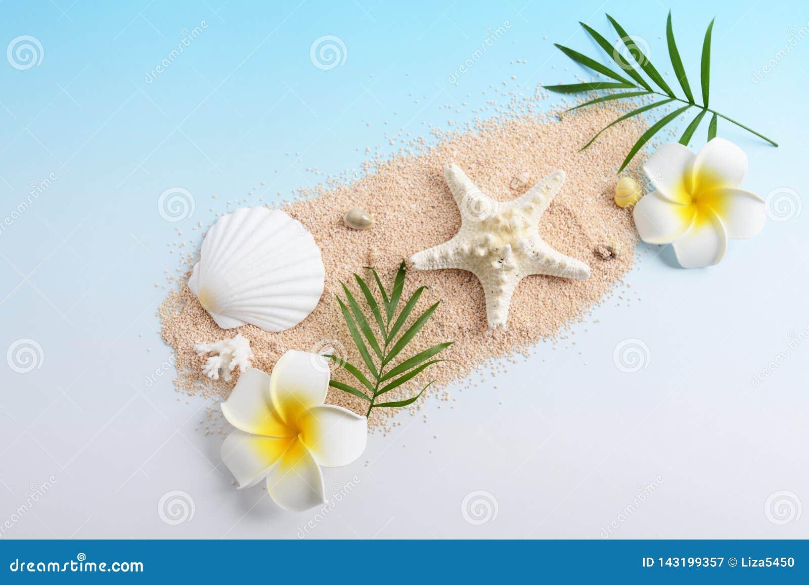 Escudos do mar com flores