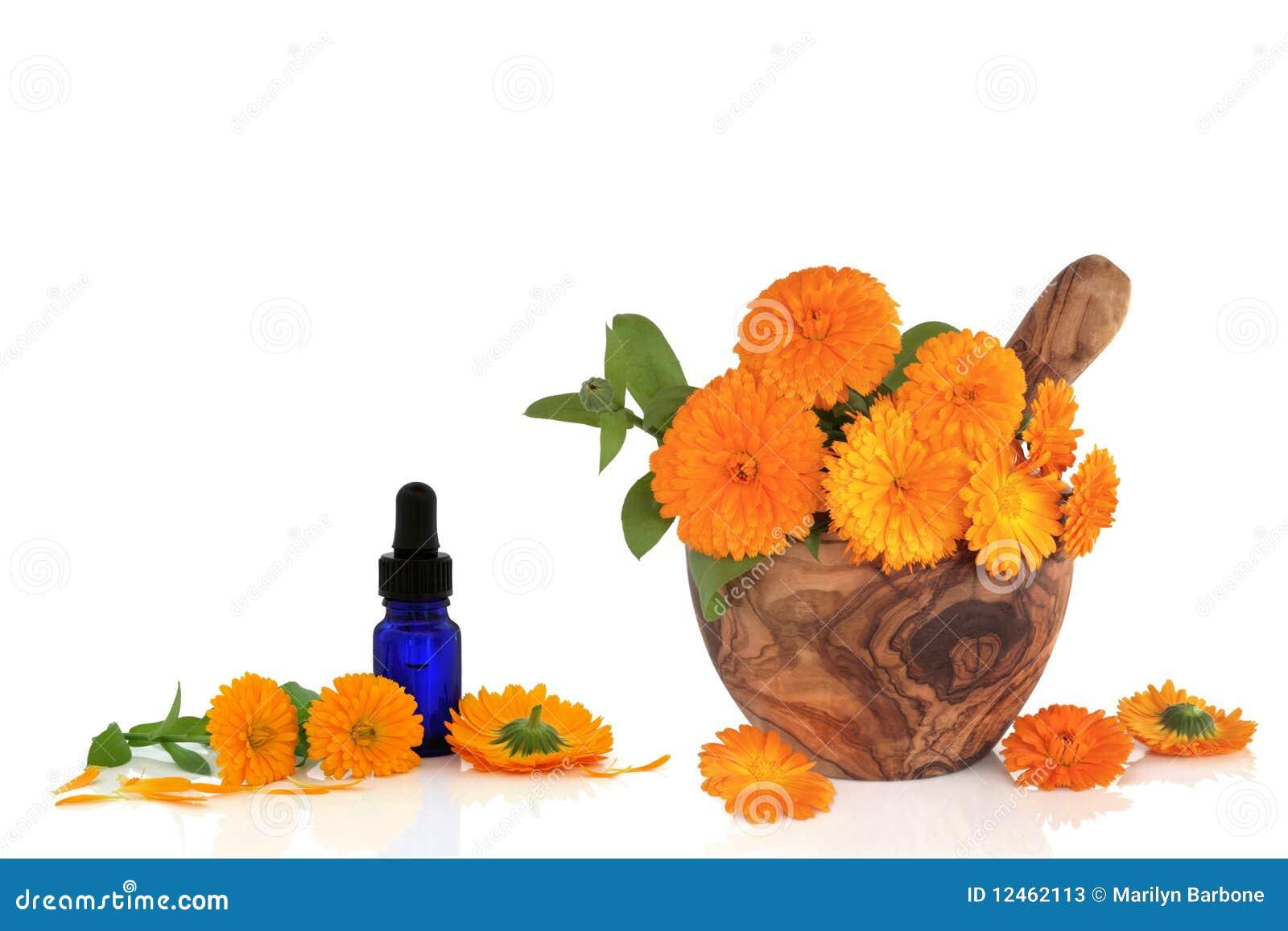 Esenci kwiatu nagietek